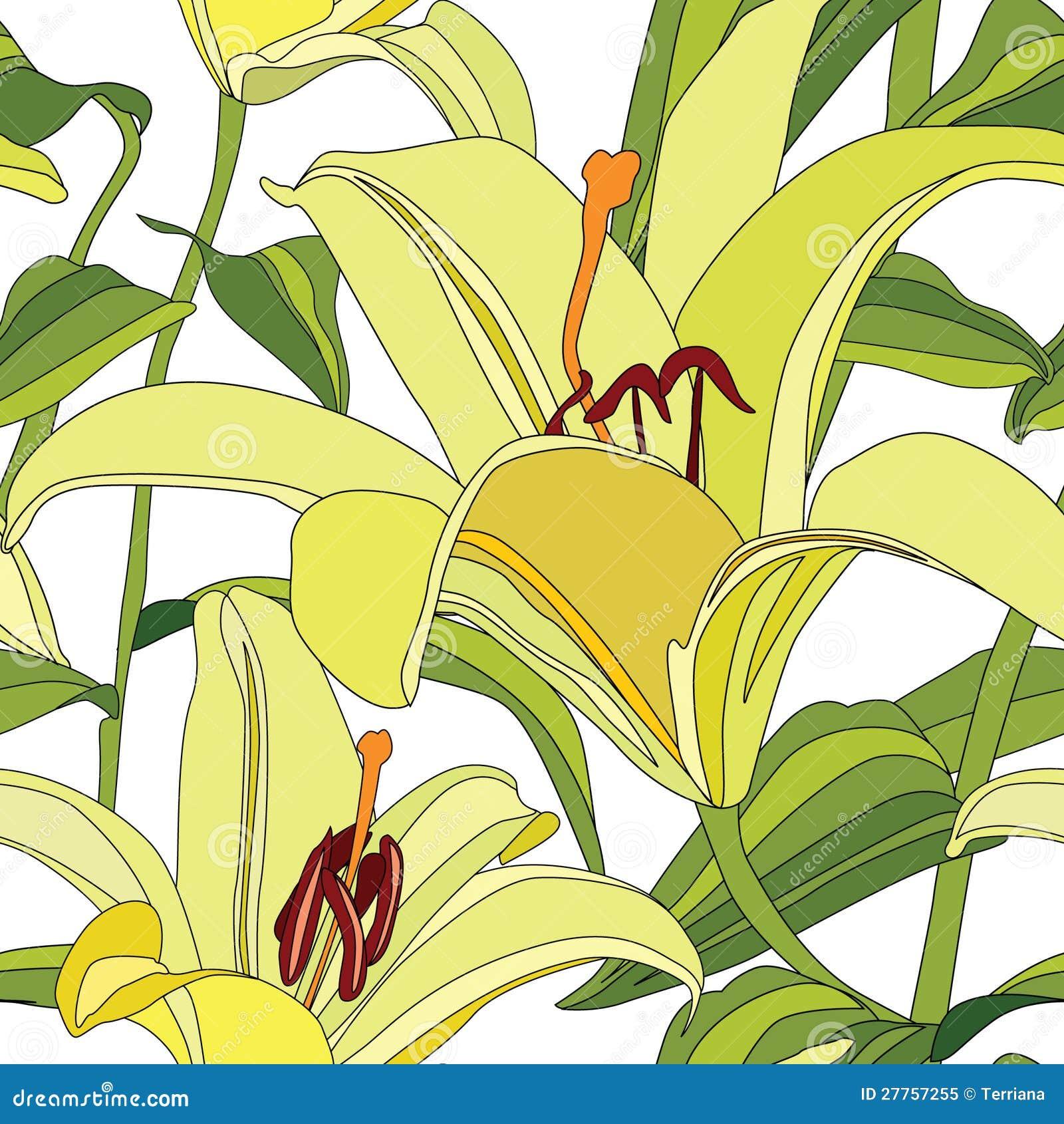 Configuration sans joint florale avec le lis doux de fleurs