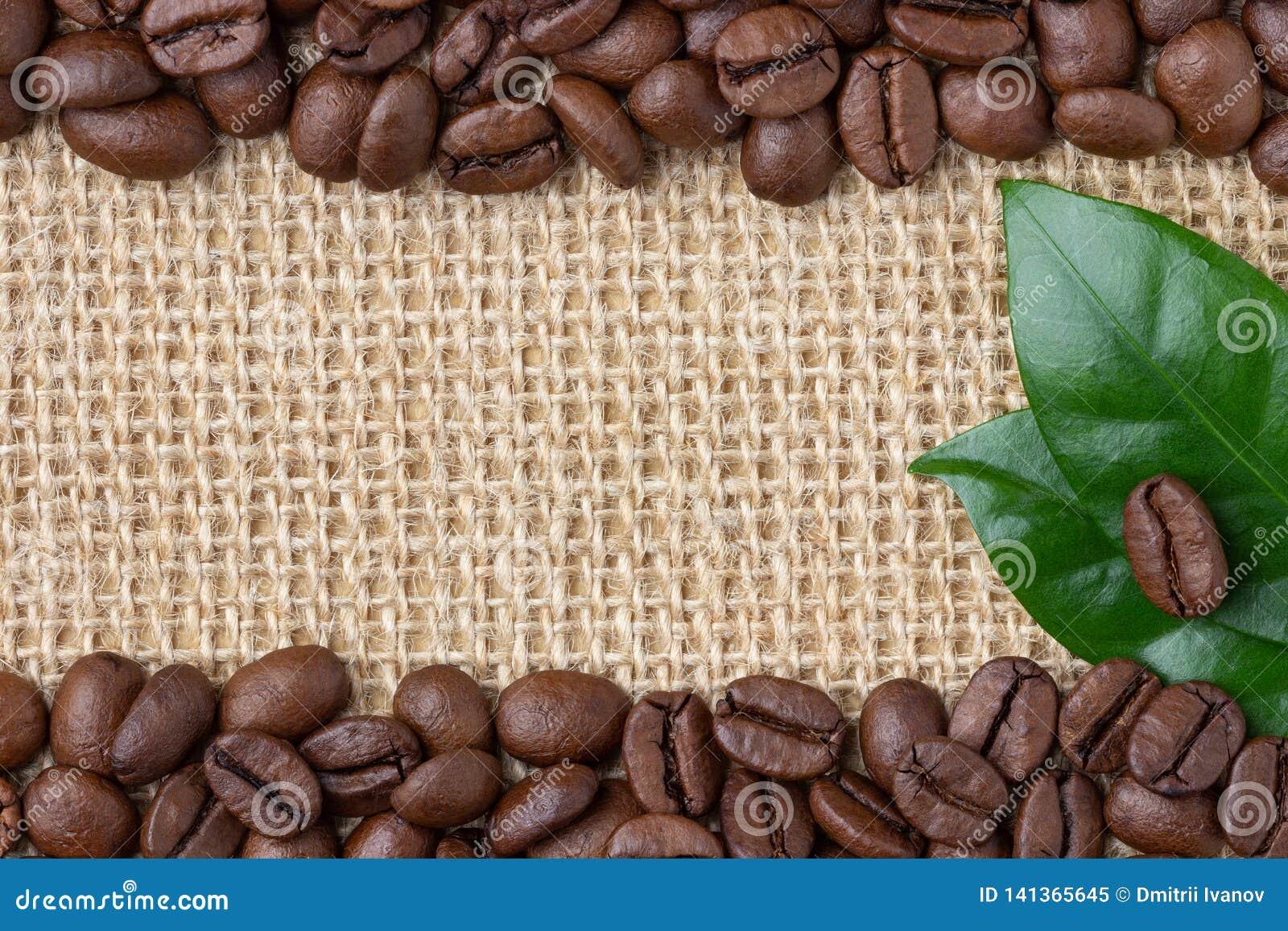 Confine del caffè Fagioli e foglia sopra il fondo della tela da imballaggio