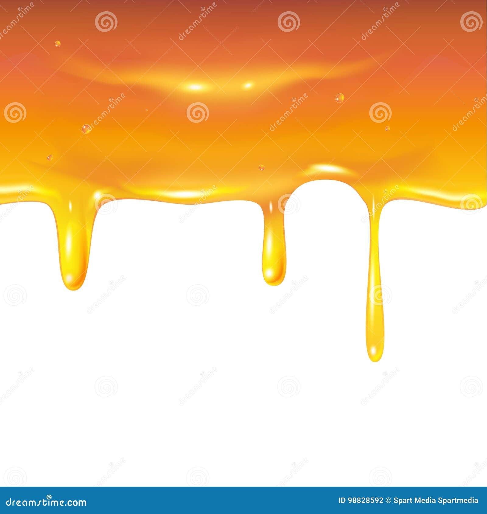 Confine del miele