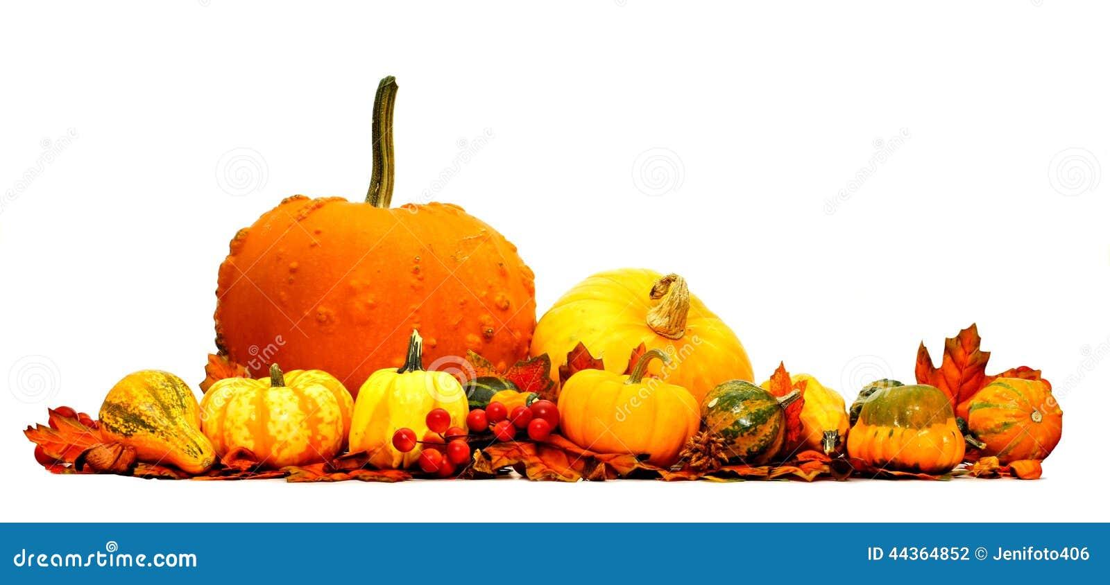Confine della verdura di autunno