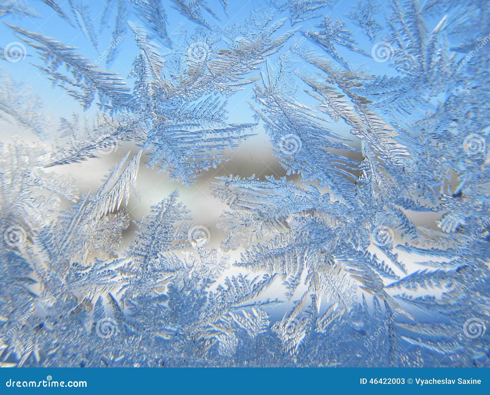 Congelé