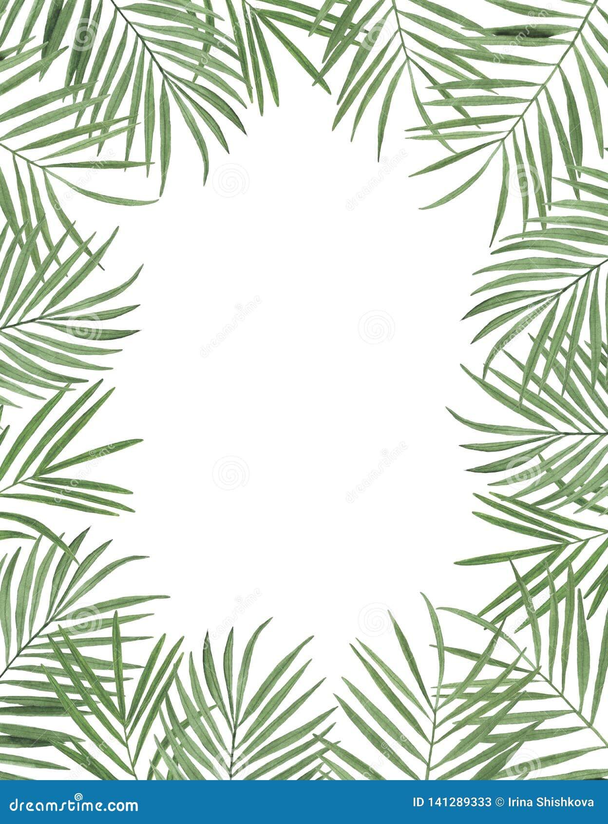 Congratul botânico da decoração do projeto do convite do cartão da decoração das decorações das ilustrações da aquarela dos trópi