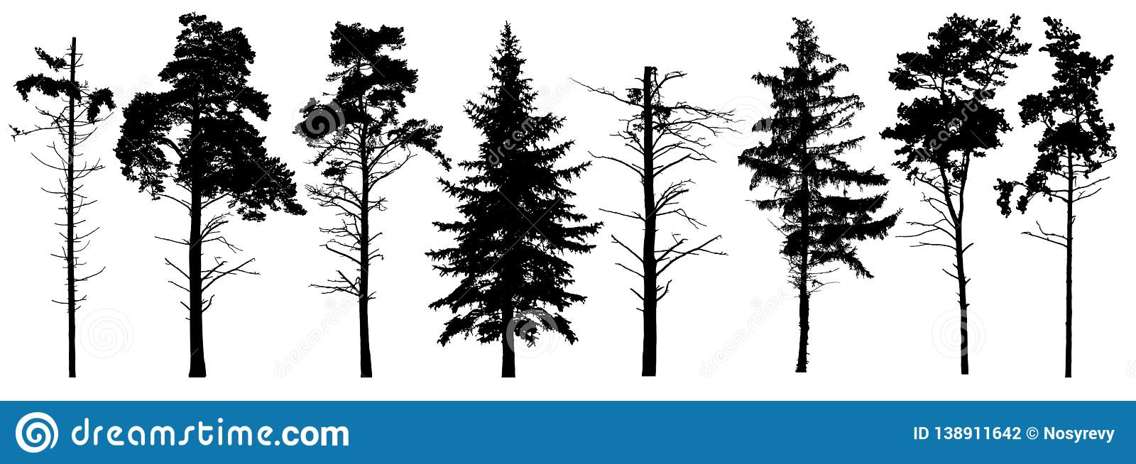 Coniferous set evergreen tree with branches knots sticks in winter. Forest trees silhouette. Isolated vector set.