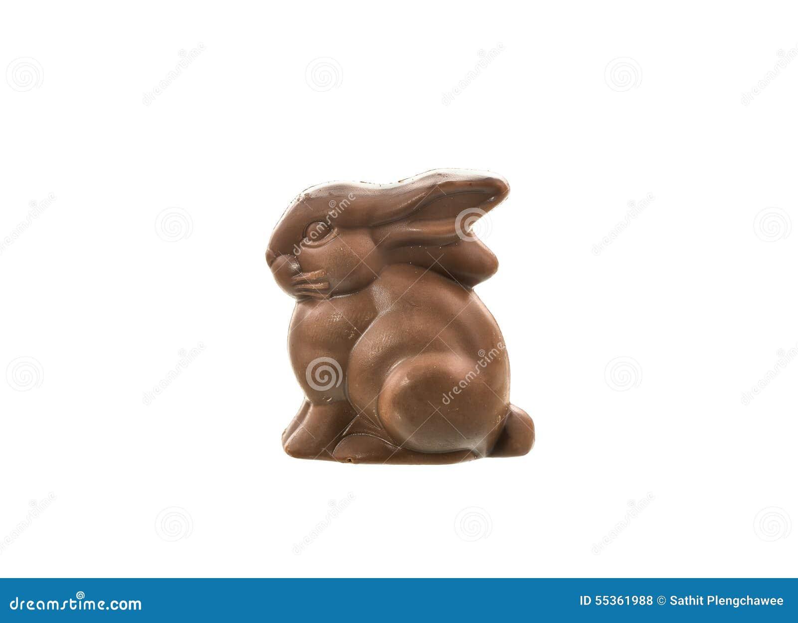 Coniglietto del cioccolato isolato su priorità bassa bianca