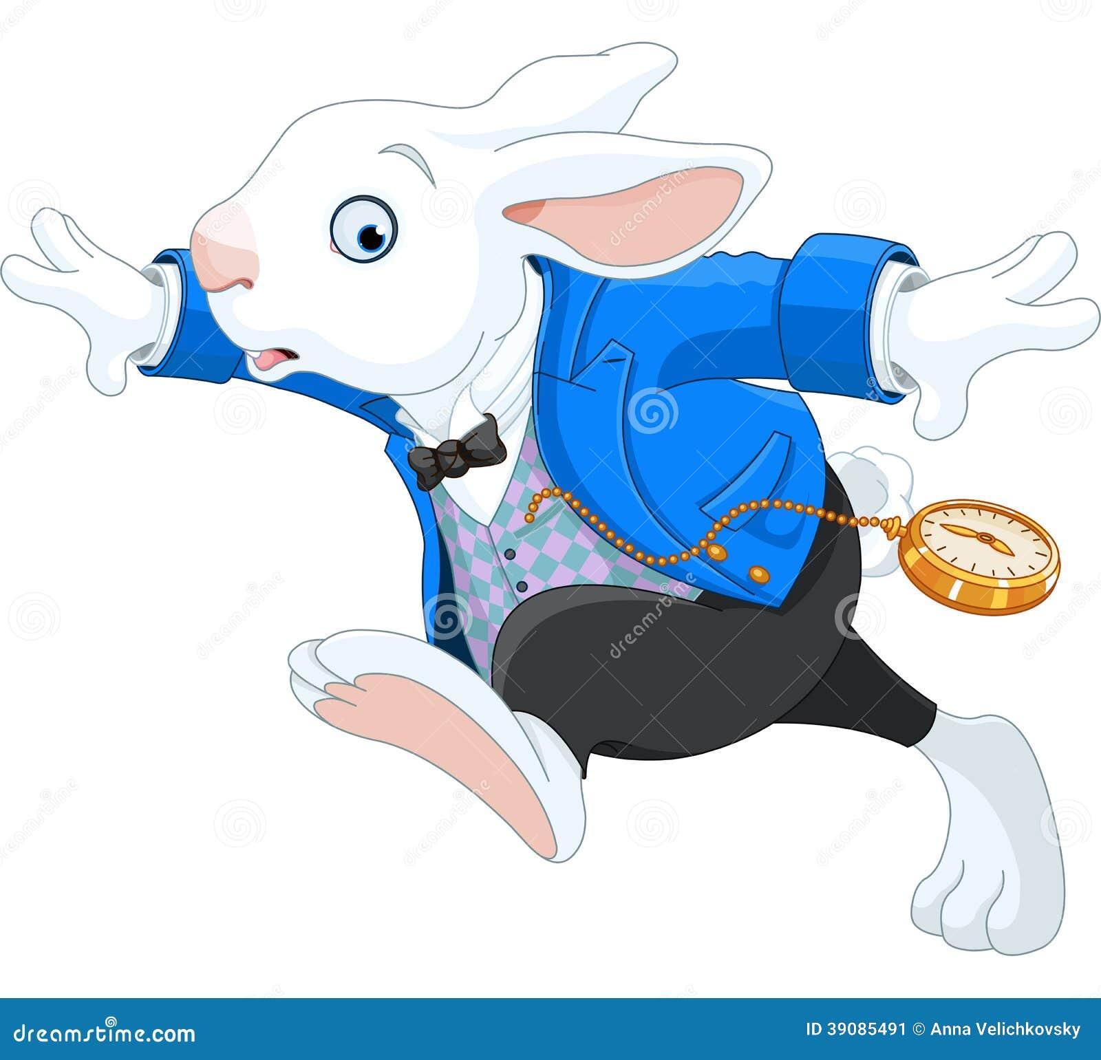 Coniglio bianco corrente
