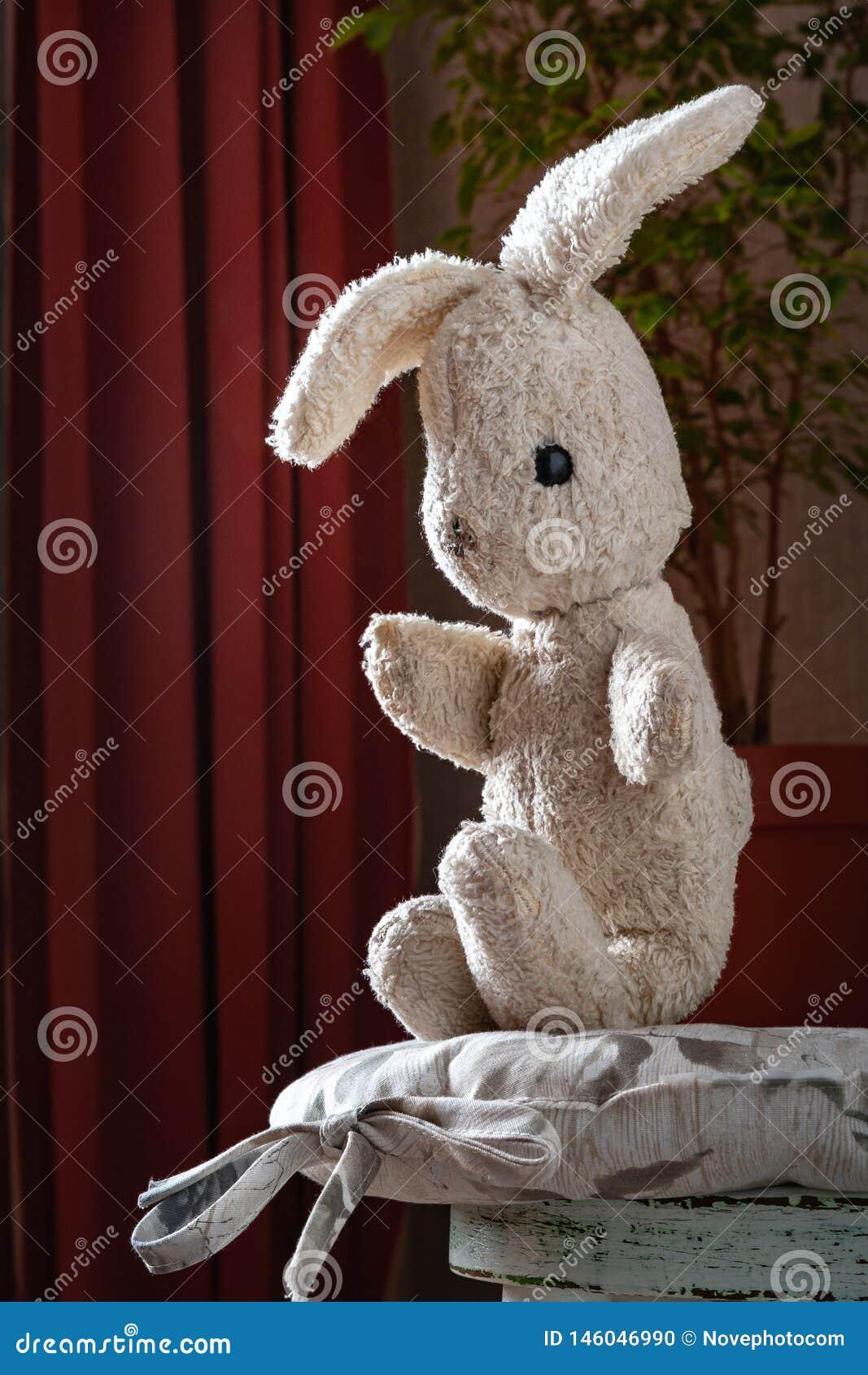 Coniglio d annata del giocattolo La vecchia lepre molle d annata del giocattolo si siede in sedia bianca d annata