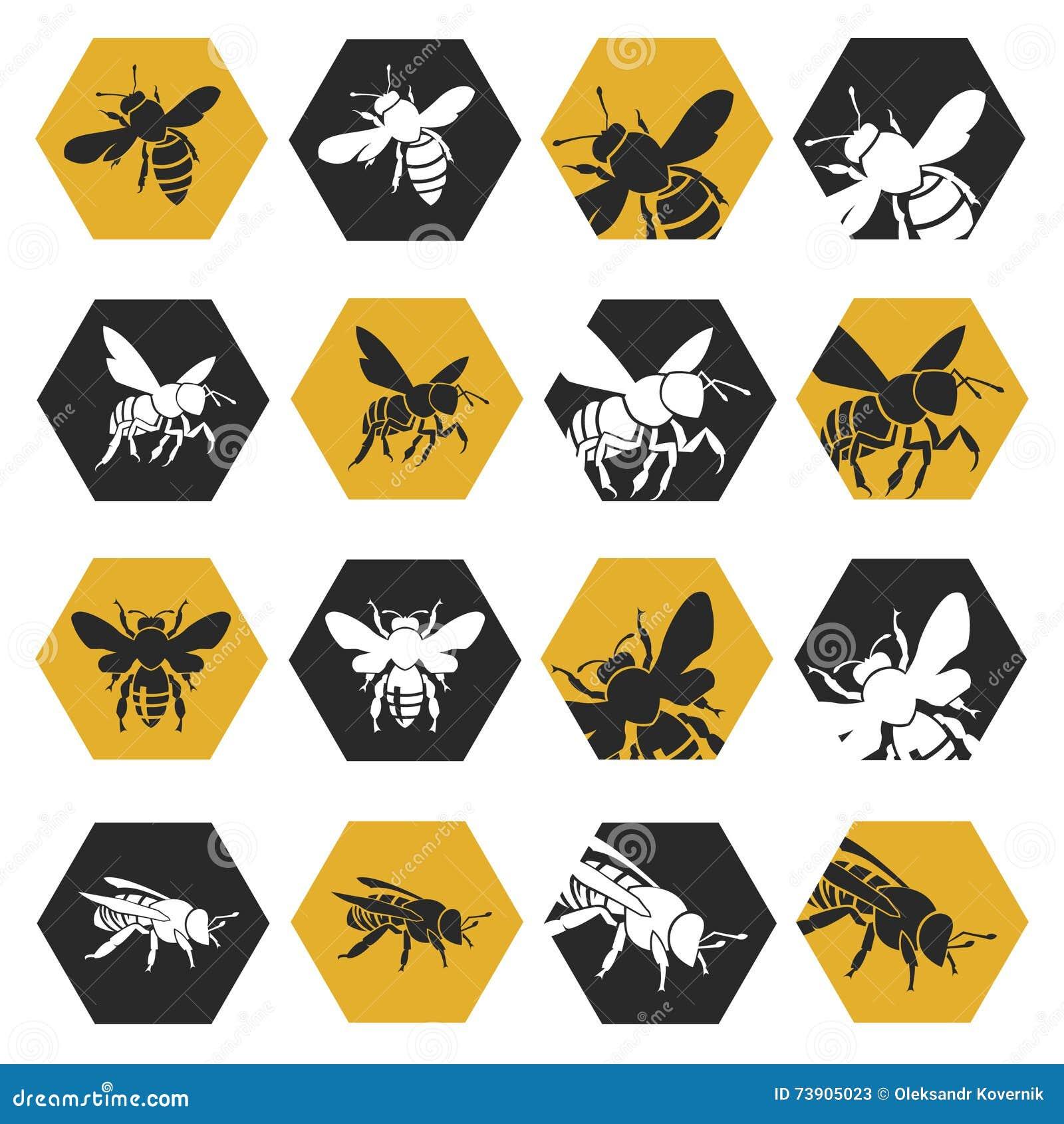Conjunto de abejas