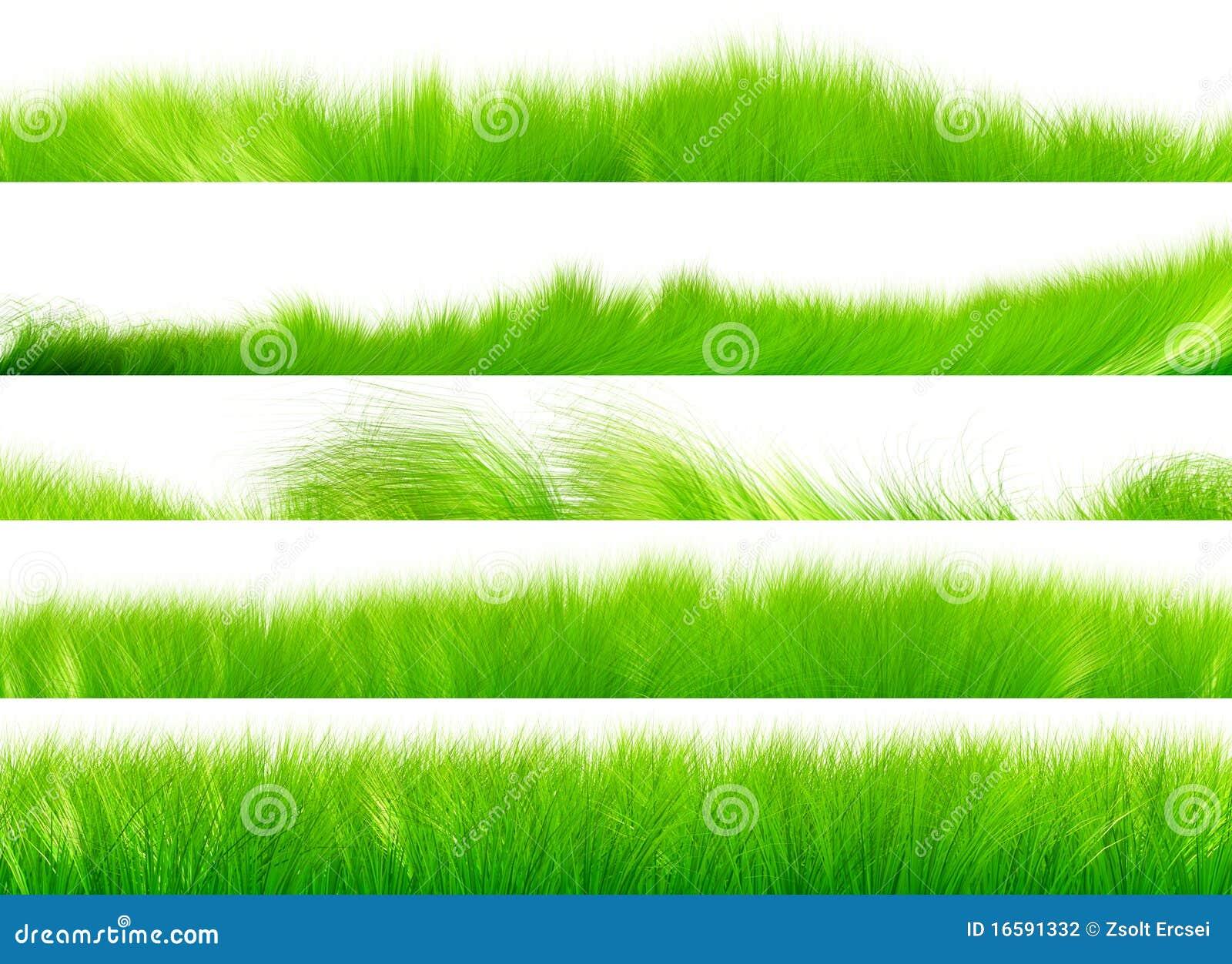 Conjunto de cepillo de la hierba 01