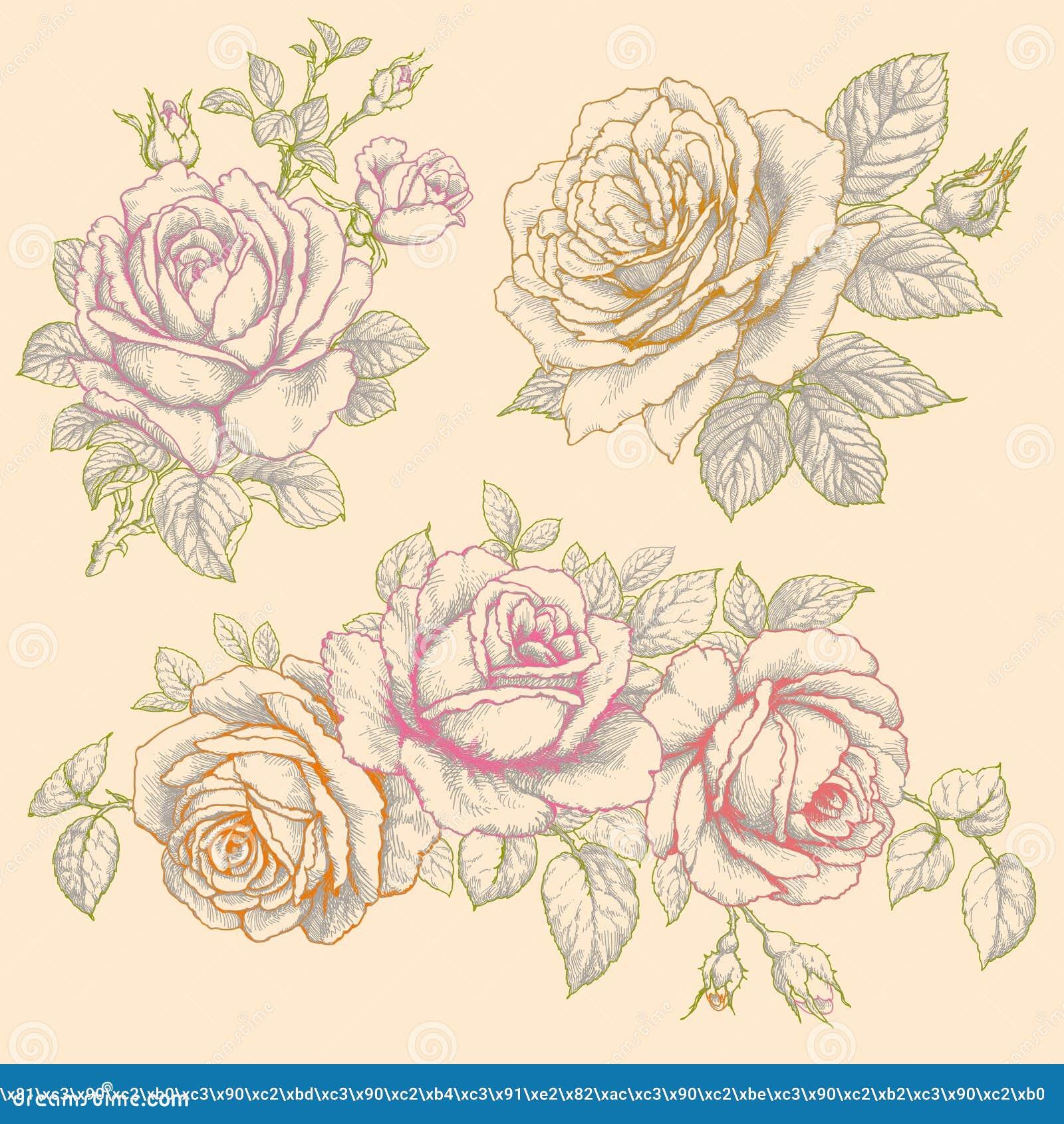 Conjunto de flores rosas Dibujo multicolor