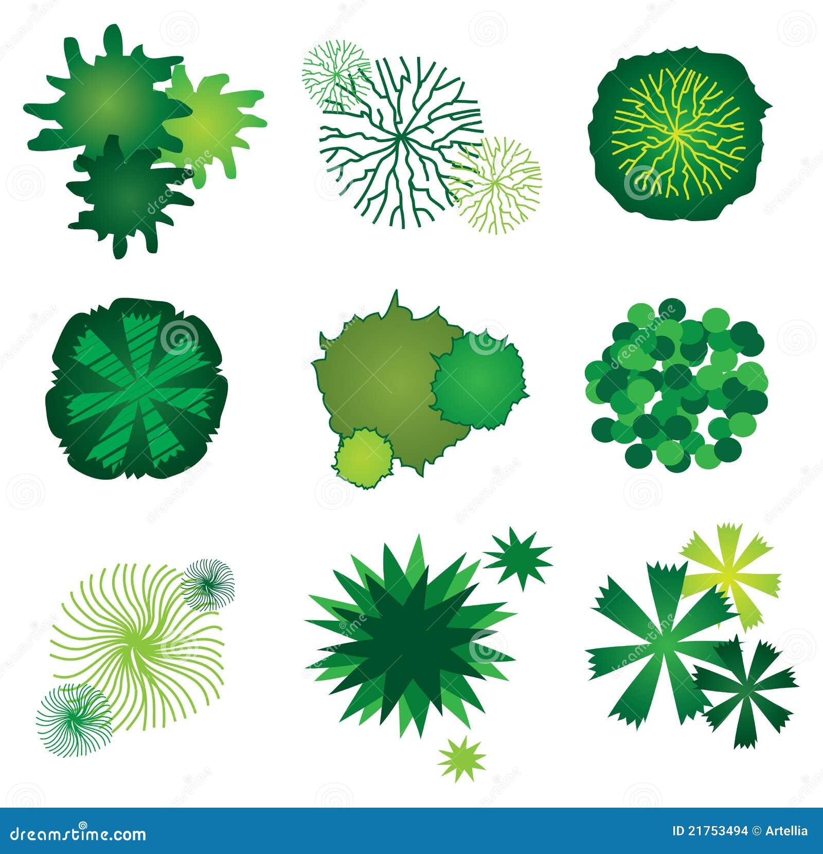 Conjunto de los iconos del árbol para el diseño de plan del jardín