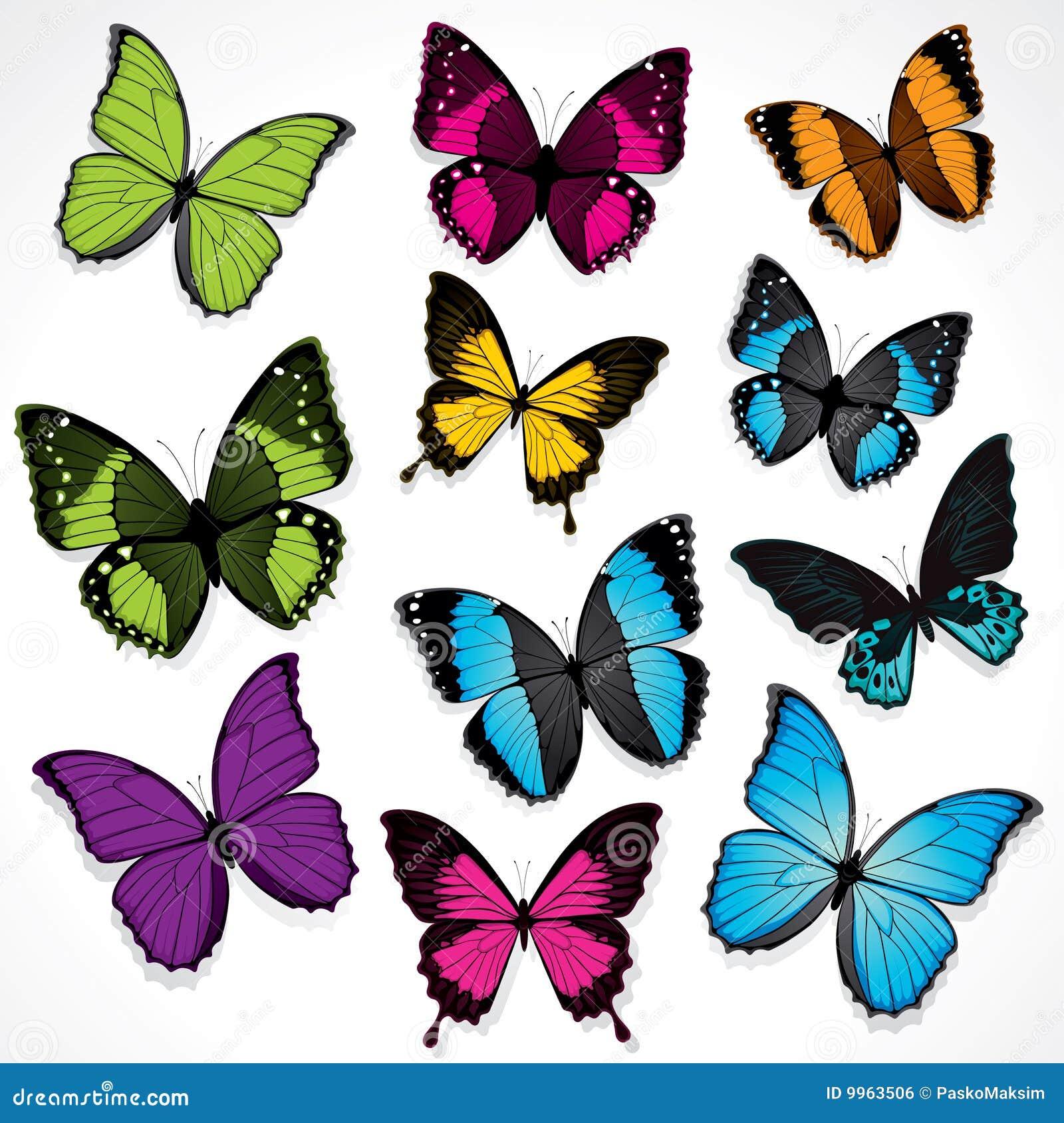 conjunto de mariposas coloridas ilustraci n del vector On mariposas coloridas
