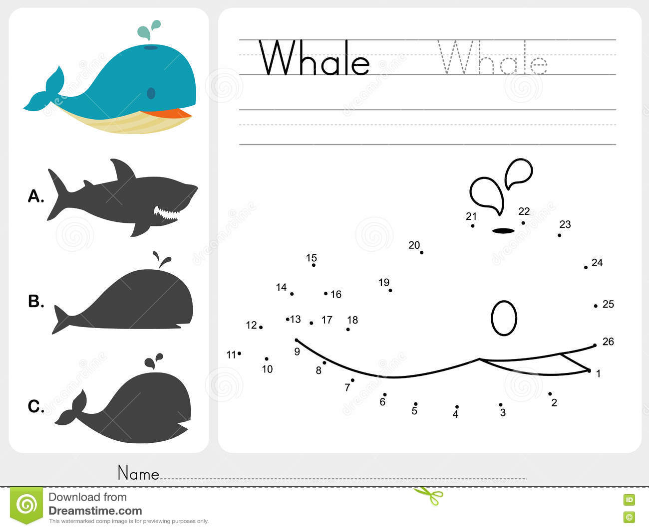 Connect Dots And Match Whale With Shadow Stock Vector ...
