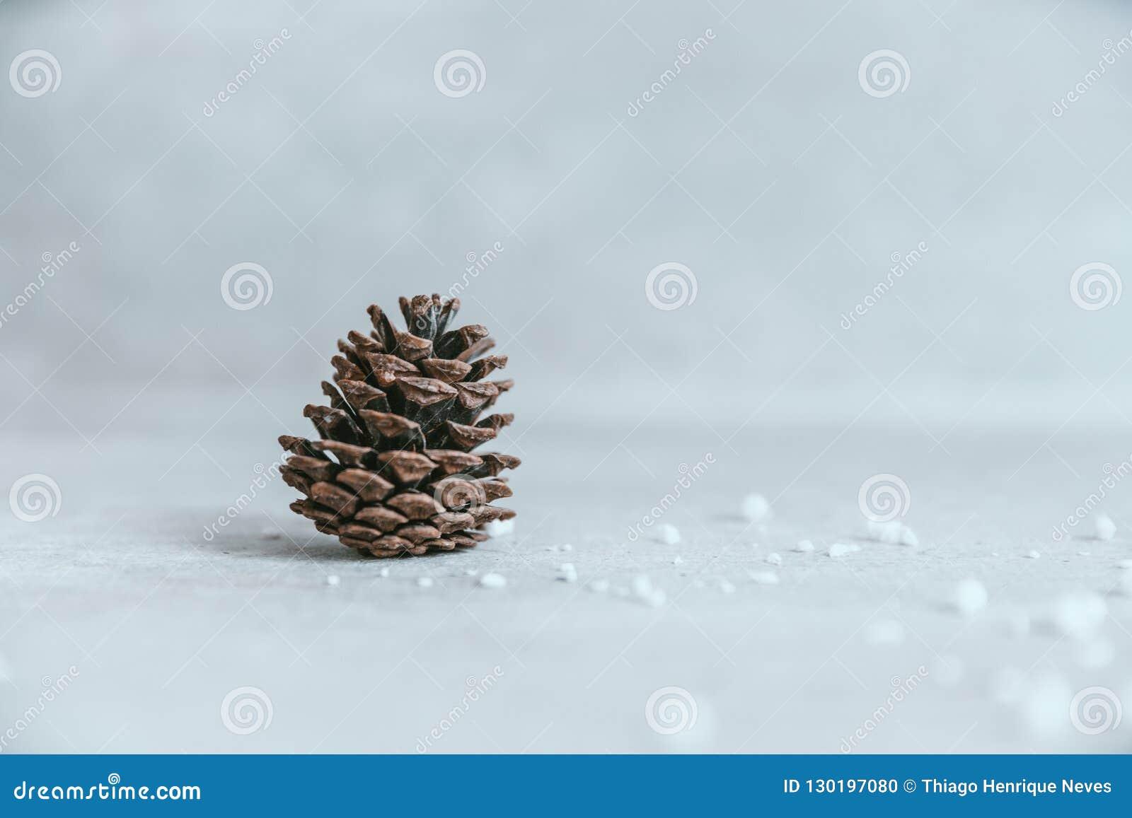 Cono del pino en la tabla de madera blanca rústica, backg de la decoración de la Navidad