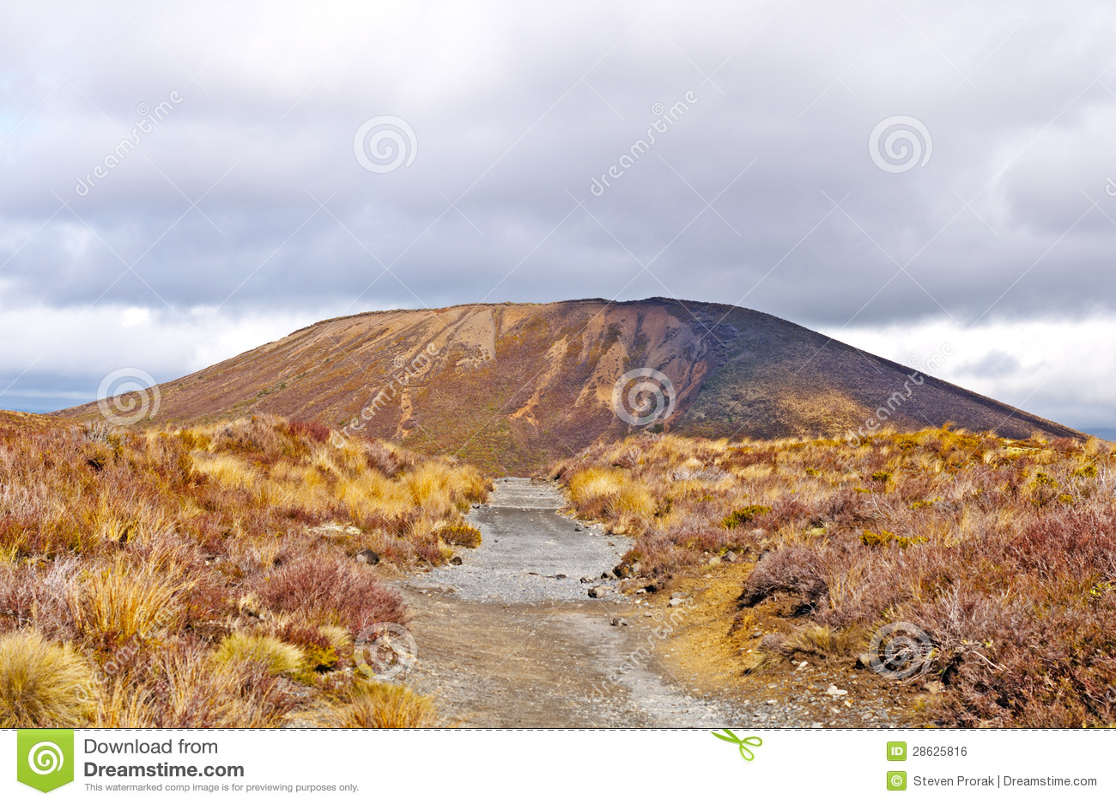 Cono della cenere in una pianura vulcanica fotografia for Cenere vulcanica