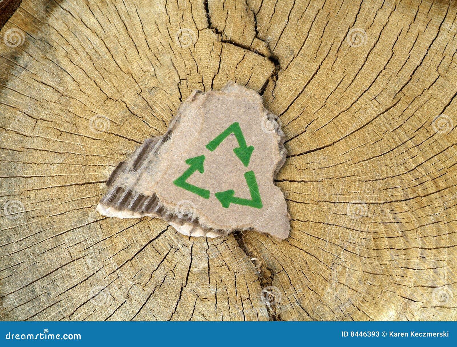 Conservazione dell albero