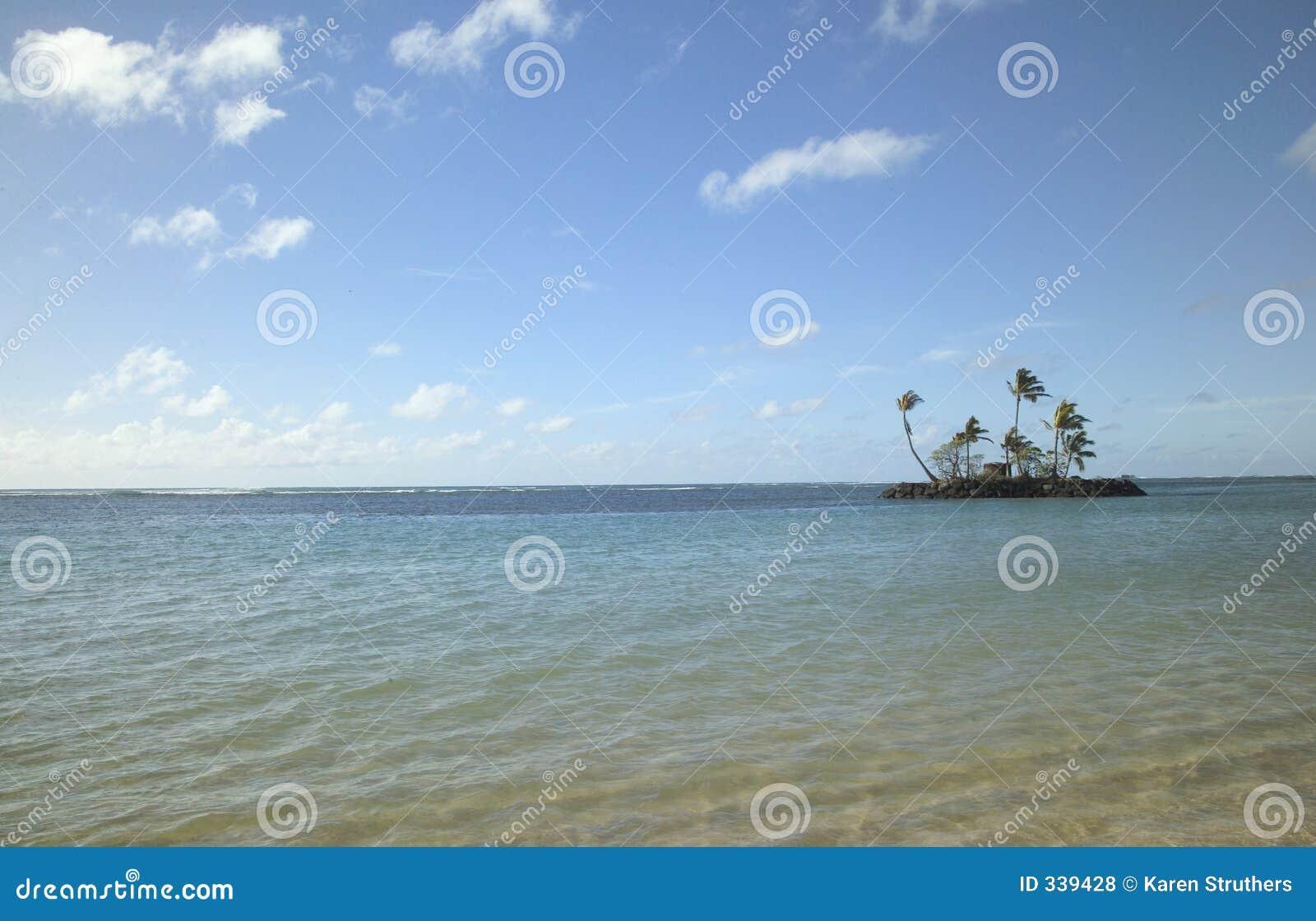Console de deserto minúsculo em Havaí