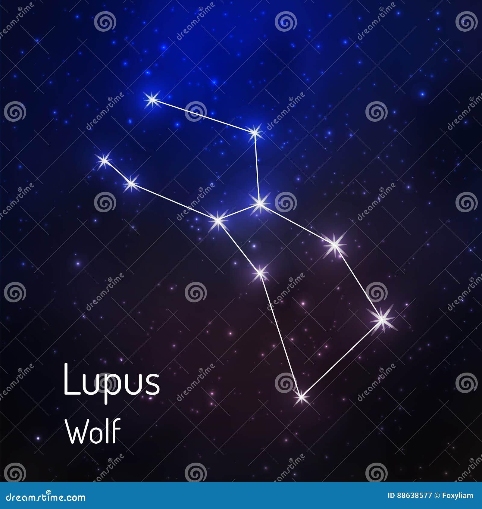 Constelação no céu estrelado da noite