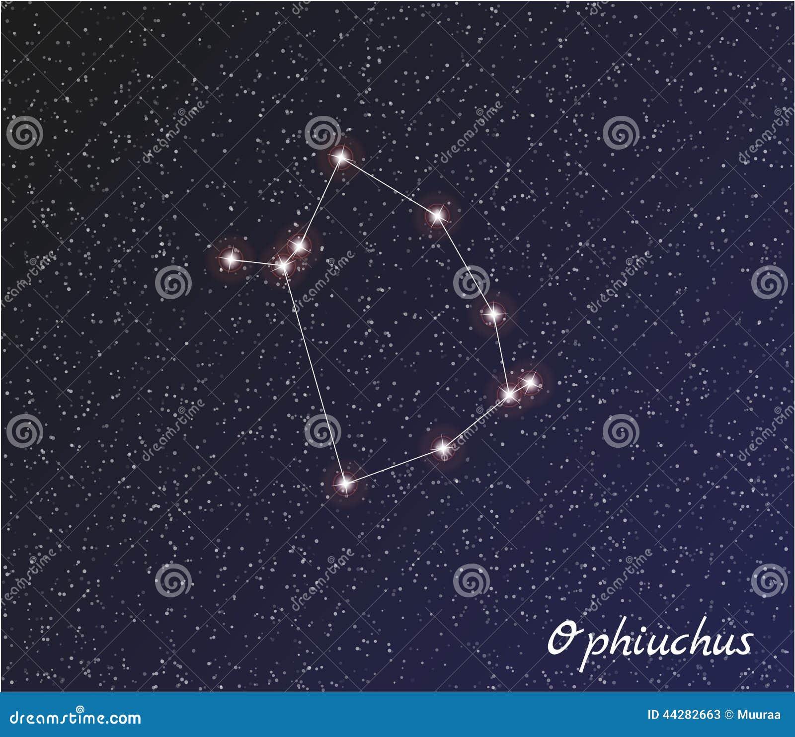 constellation ophiuchus stock vector
