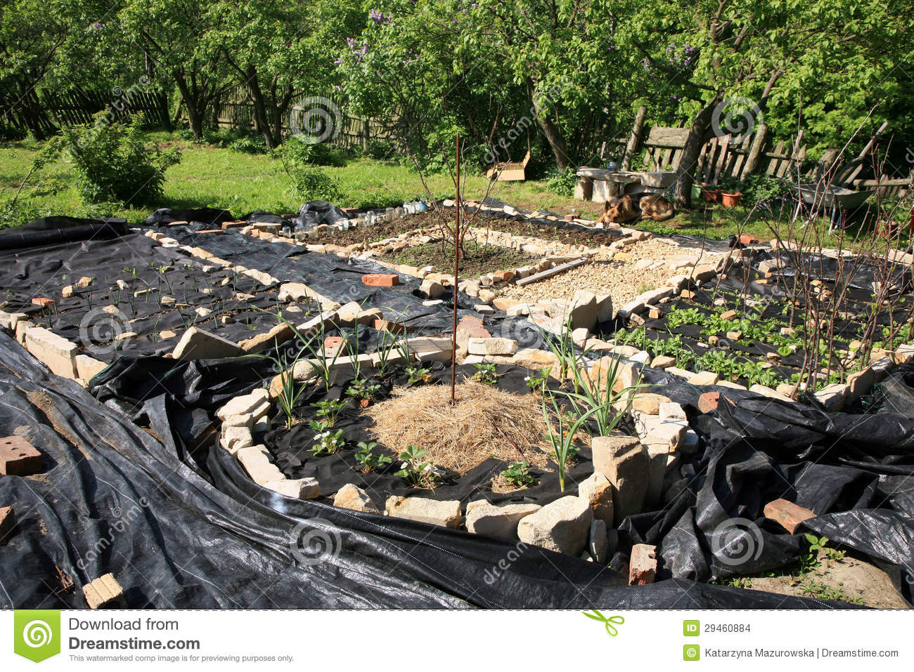 Construction d 39 un jardin formel de l gume et d 39 herbe for Construction jardin