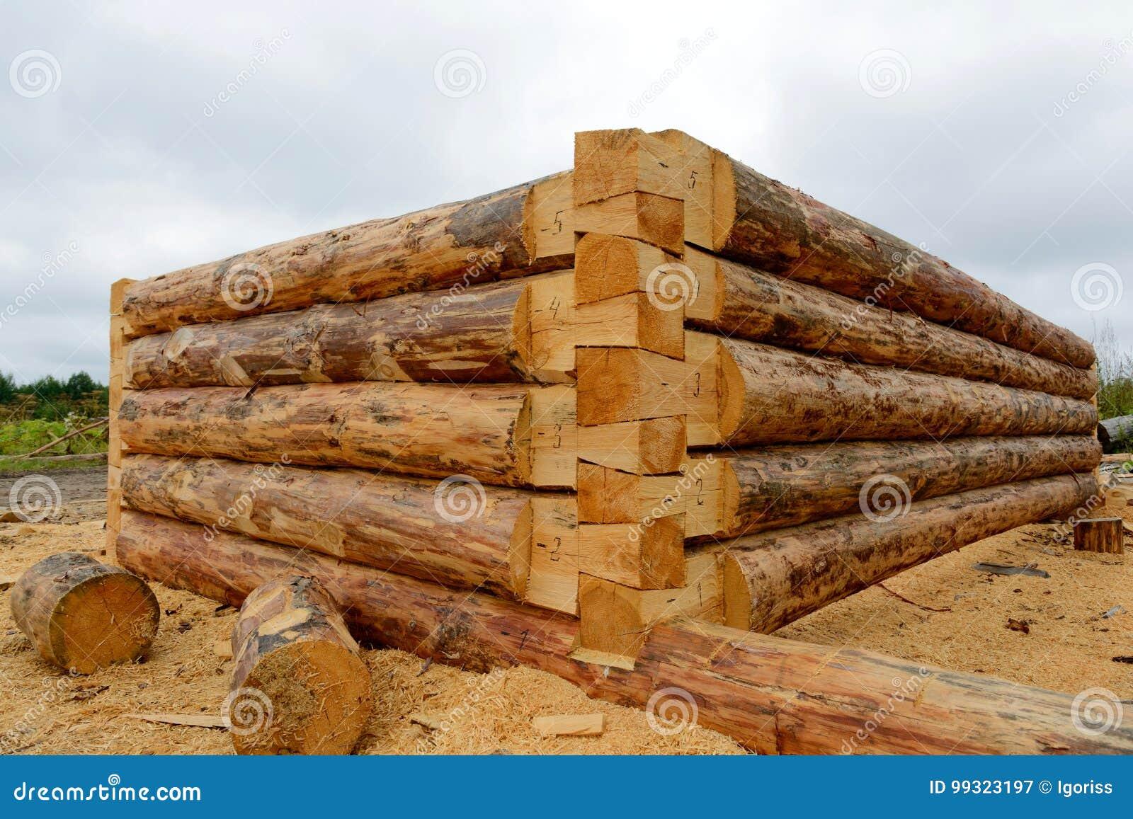 Construction Cabane En Rondin De Bois