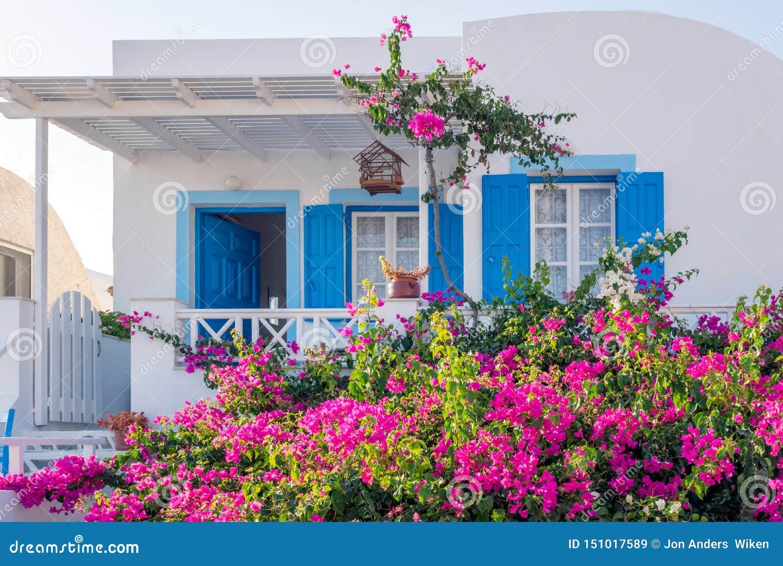 Construction dans Santorini avec les détails bleus et les fleurs pourpres dans le jardin