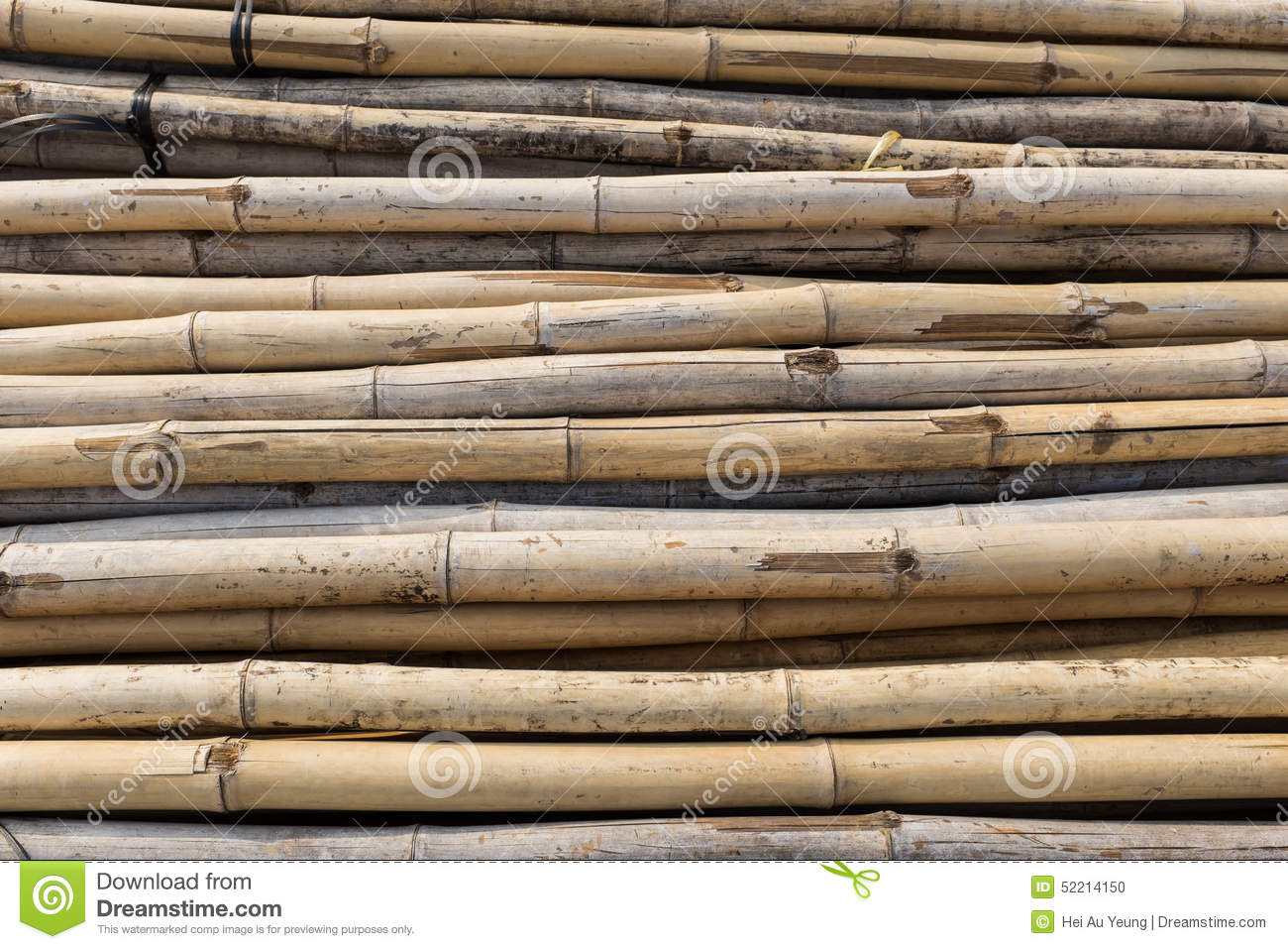 bamboo as an engineering material Special attention is focused on the research of natural composites (bamboo, cork etc) for medical engineering hybrid materials, manufacturability and productization of commonly used high-tech materials are in the focus of research.