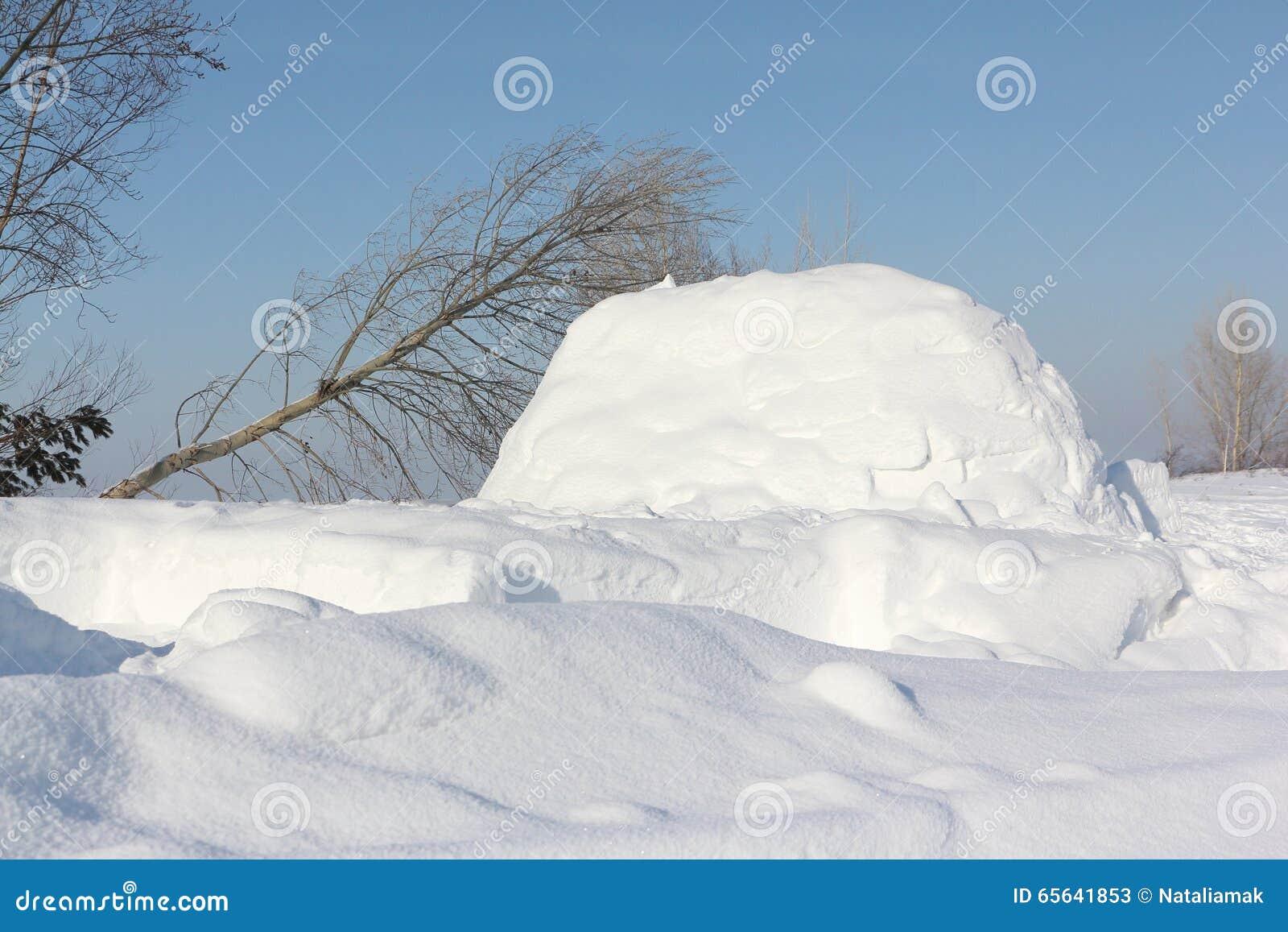 Construction un igloo sur une clairière de neige pendant l hiver