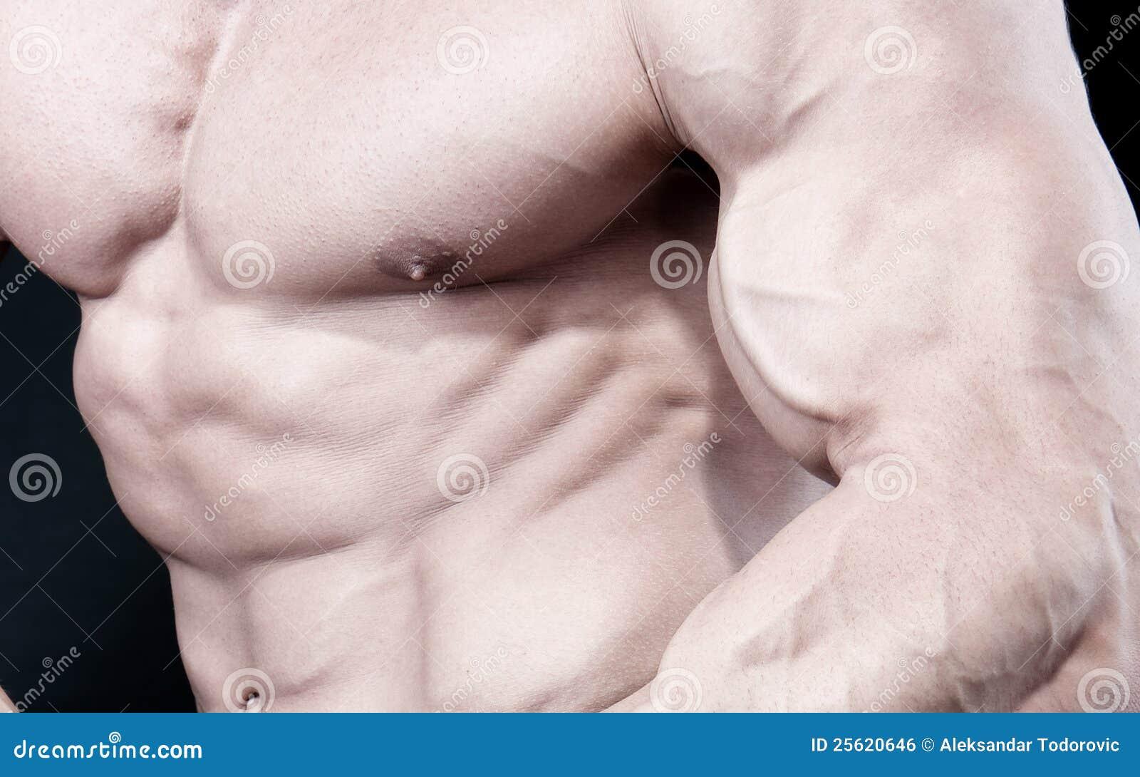 Constructor de carrocería masculina atractivo atractivo atlético