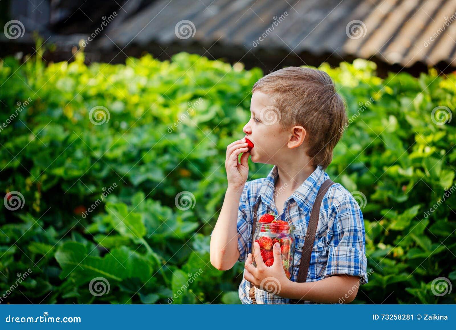 Consumición linda del niño pequeño fresas frescas maduras en el verano Garde