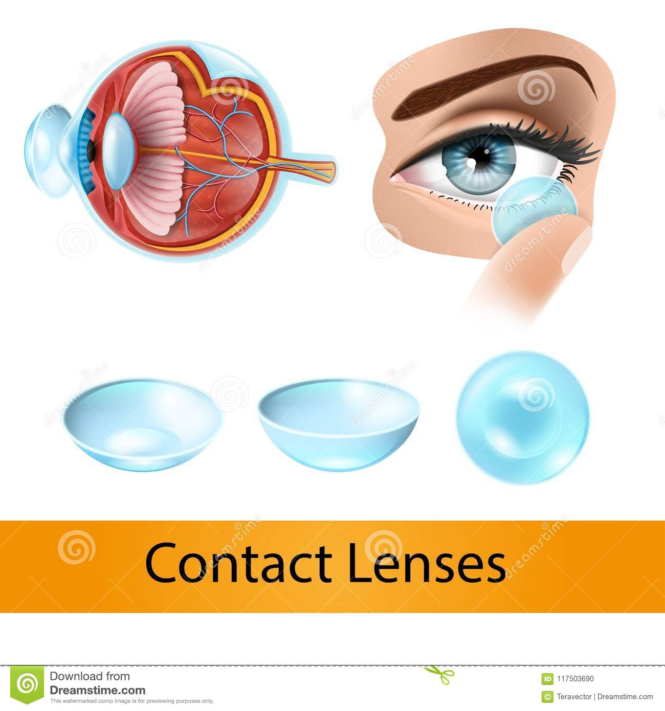 Contact Lenses Vector Concept Or Chart With Eye Stock Vector ...