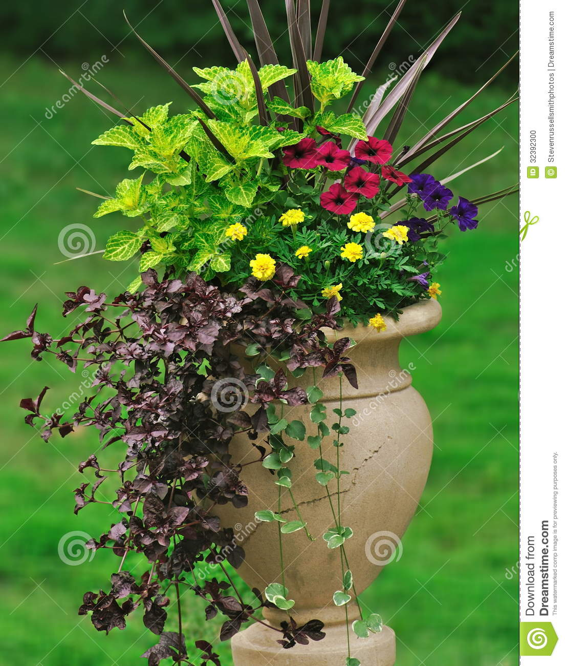 Container Gardening Stock Photo - Image: 32392300