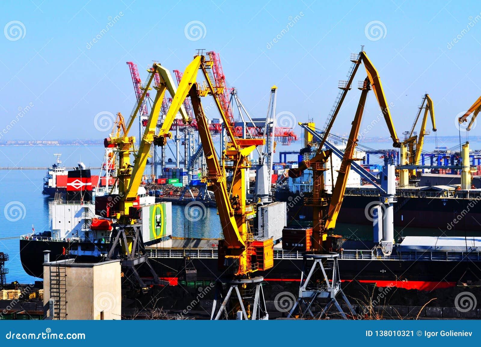 Containerschip in de uitvoer en de invoerzaken en logistiek