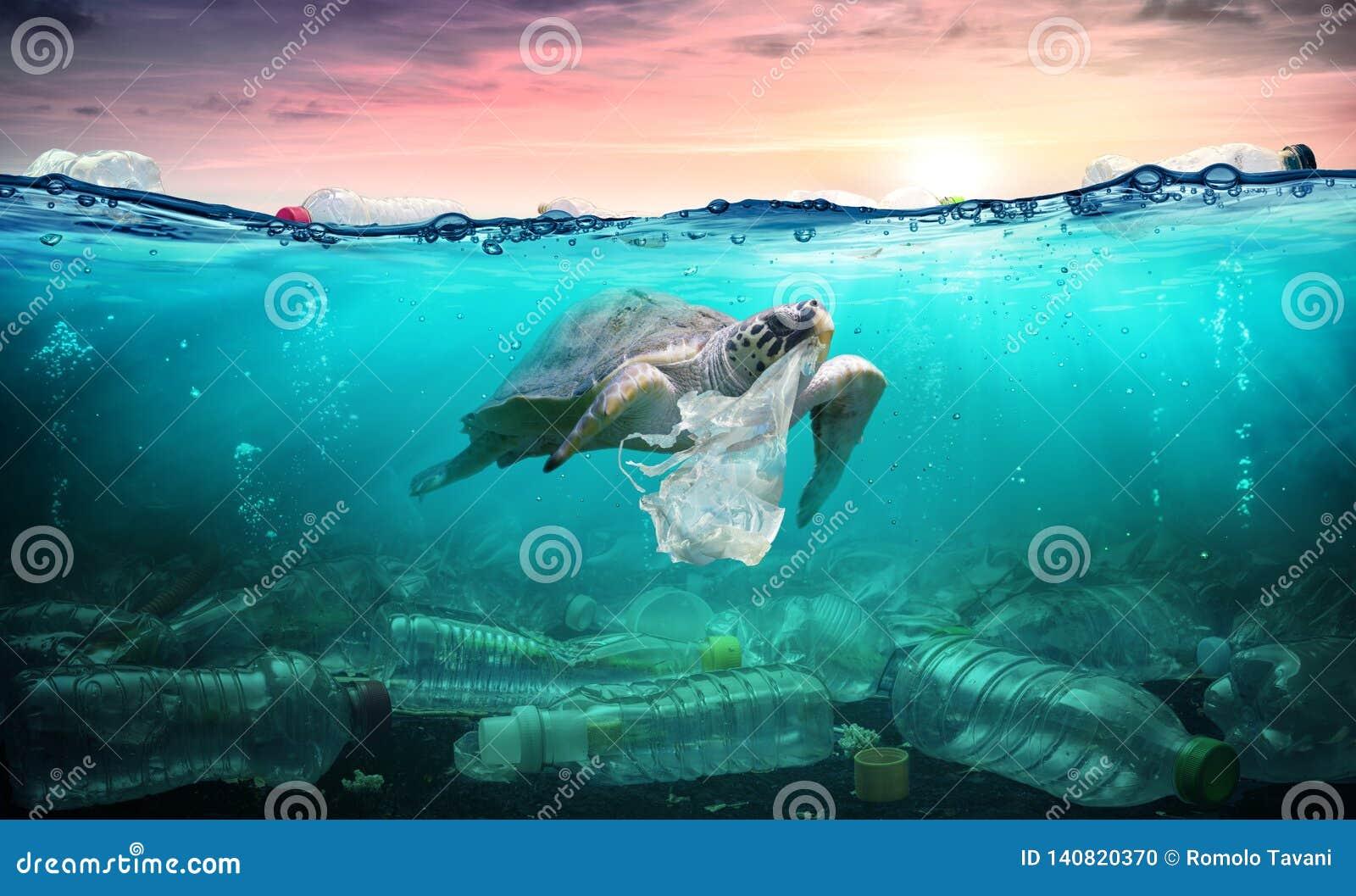 Contaminación plástica en el océano - la tortuga come la bolsa de plástico