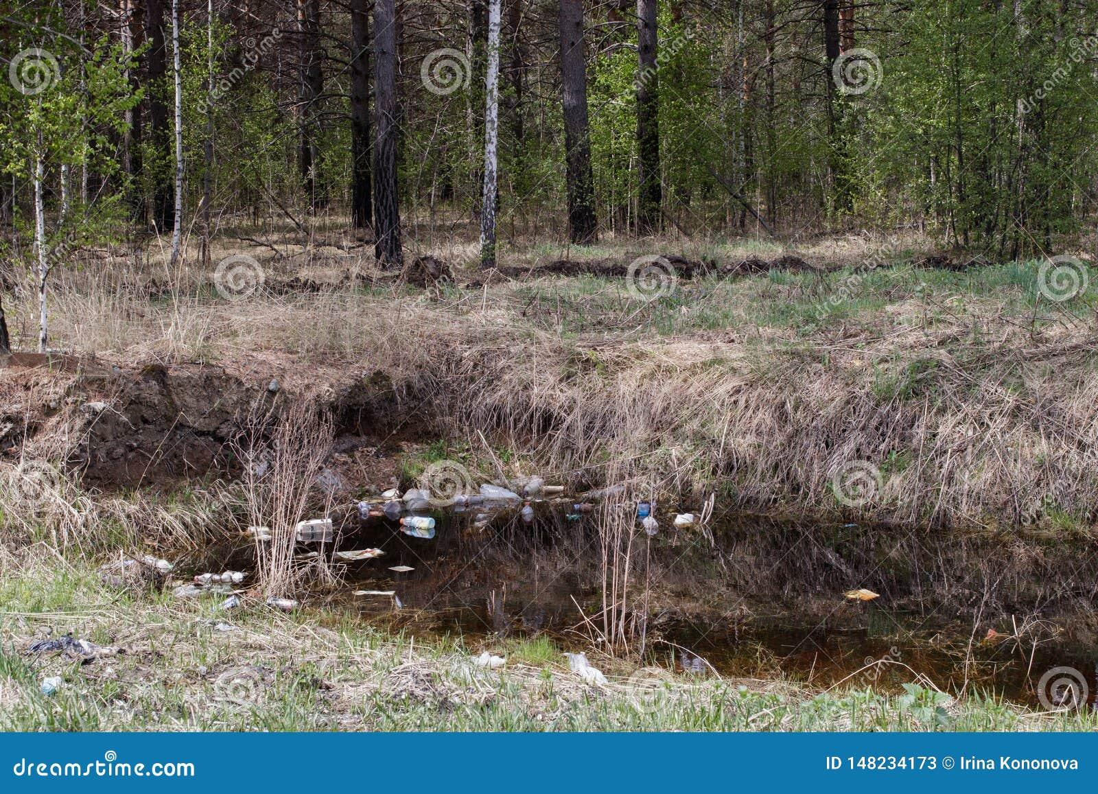 Contaminaci?n de la naturaleza La basura y las botellas pl?sticas flotan en el agua del dep?sito dentro del bosque