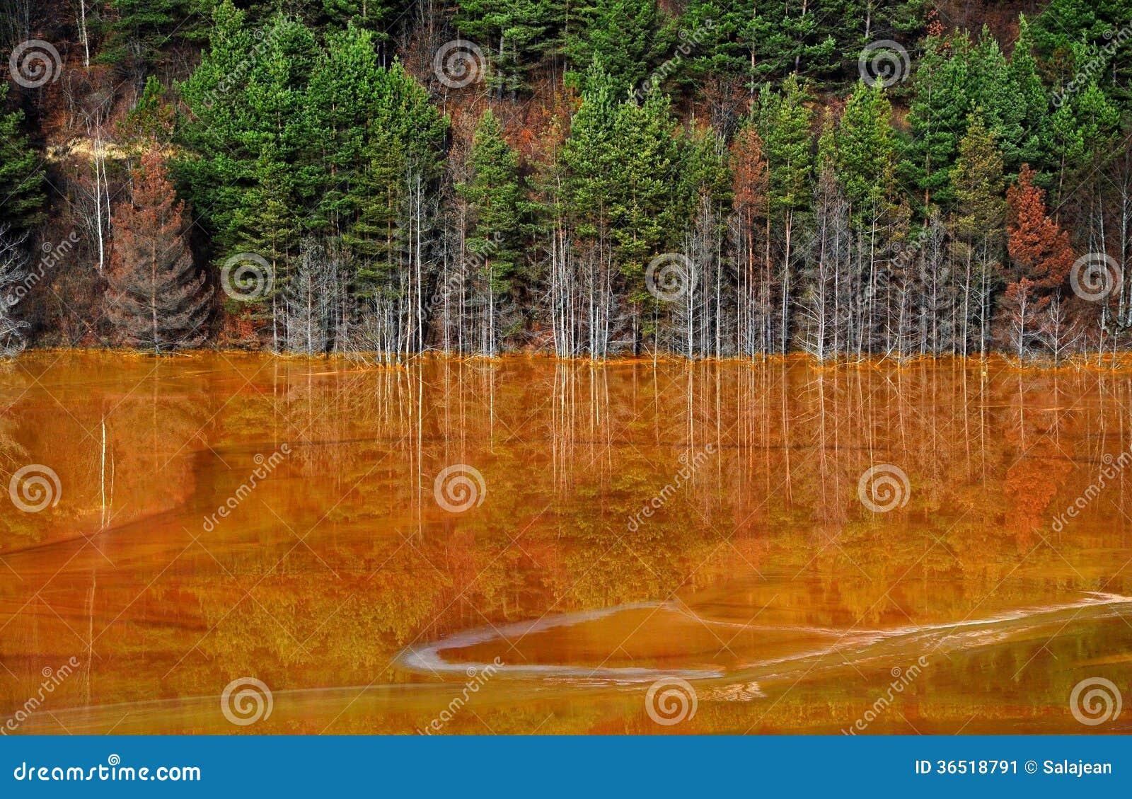 Contamination de l eau de lac dans Geamana, près de Rosia Montana, la Roumanie