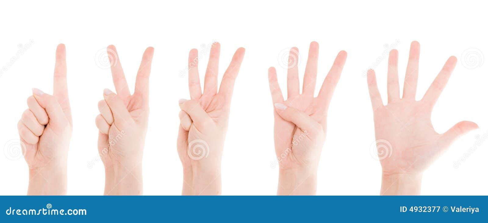 Contando as mãos de uma a cinco