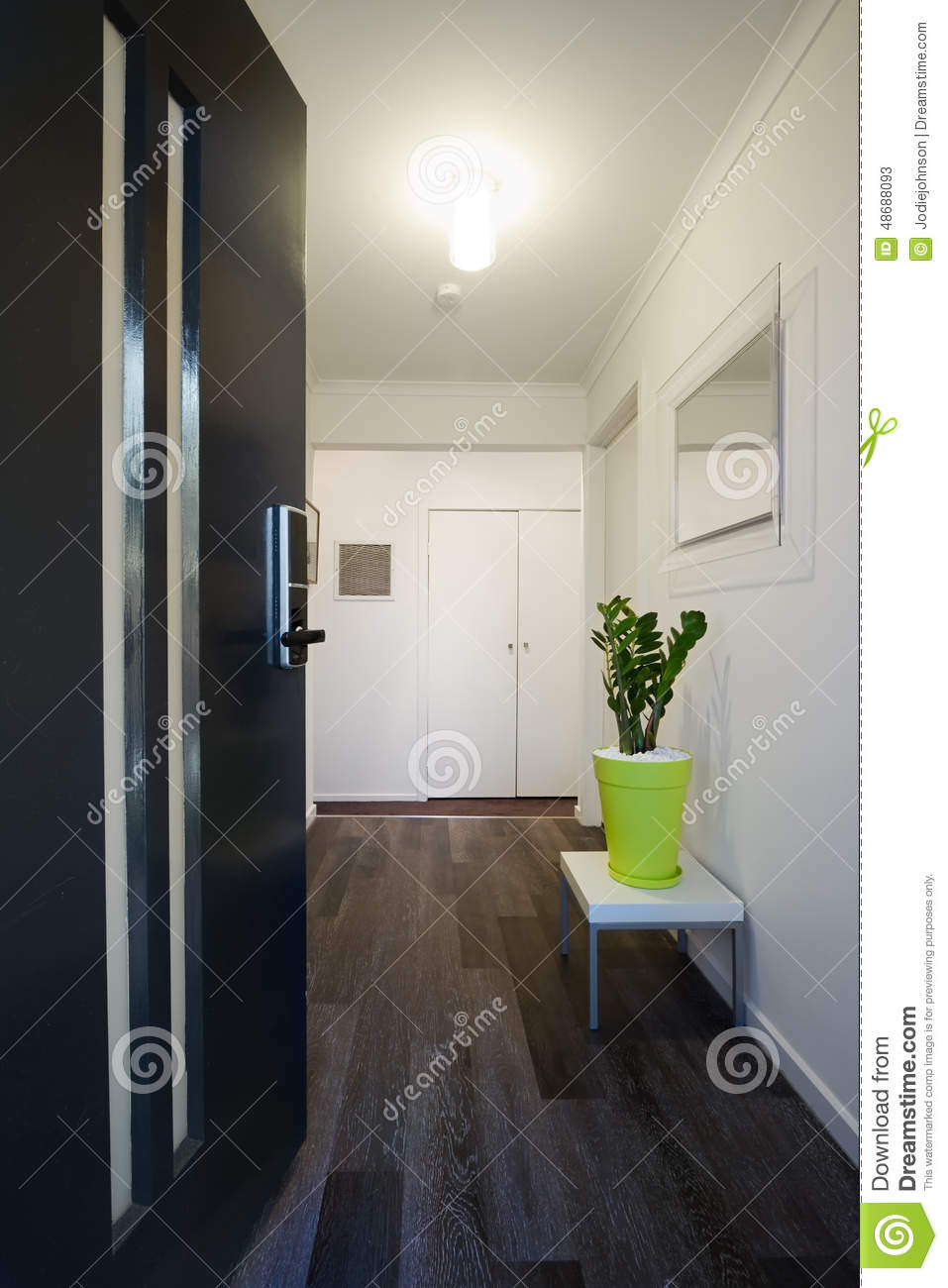 contemporary home entrance front door and hallway stock image