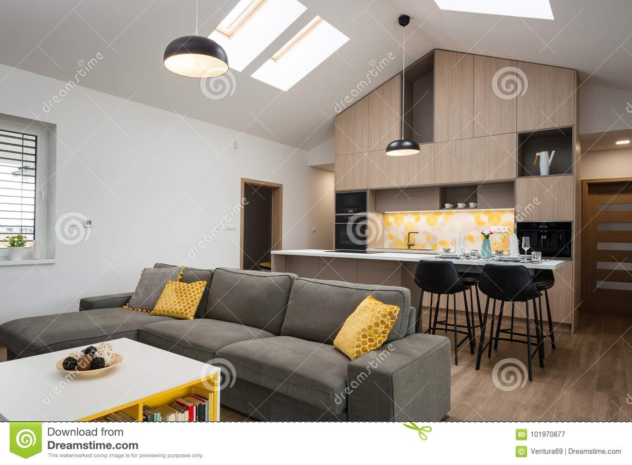 Contemporary House Living Room Connected With Kitchen