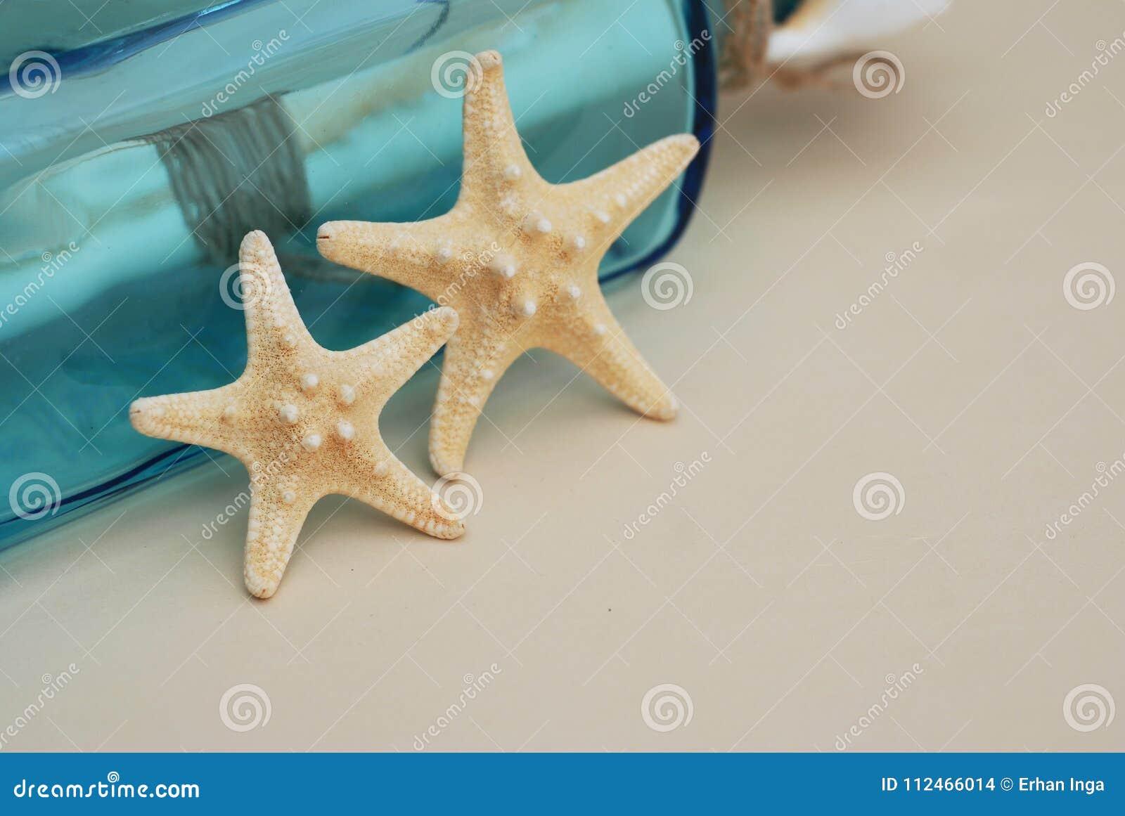 Contesto nautico di tema, stella marina decorativa sul fondo neutrale dell avorio Posto per testo Fuoco selettivo
