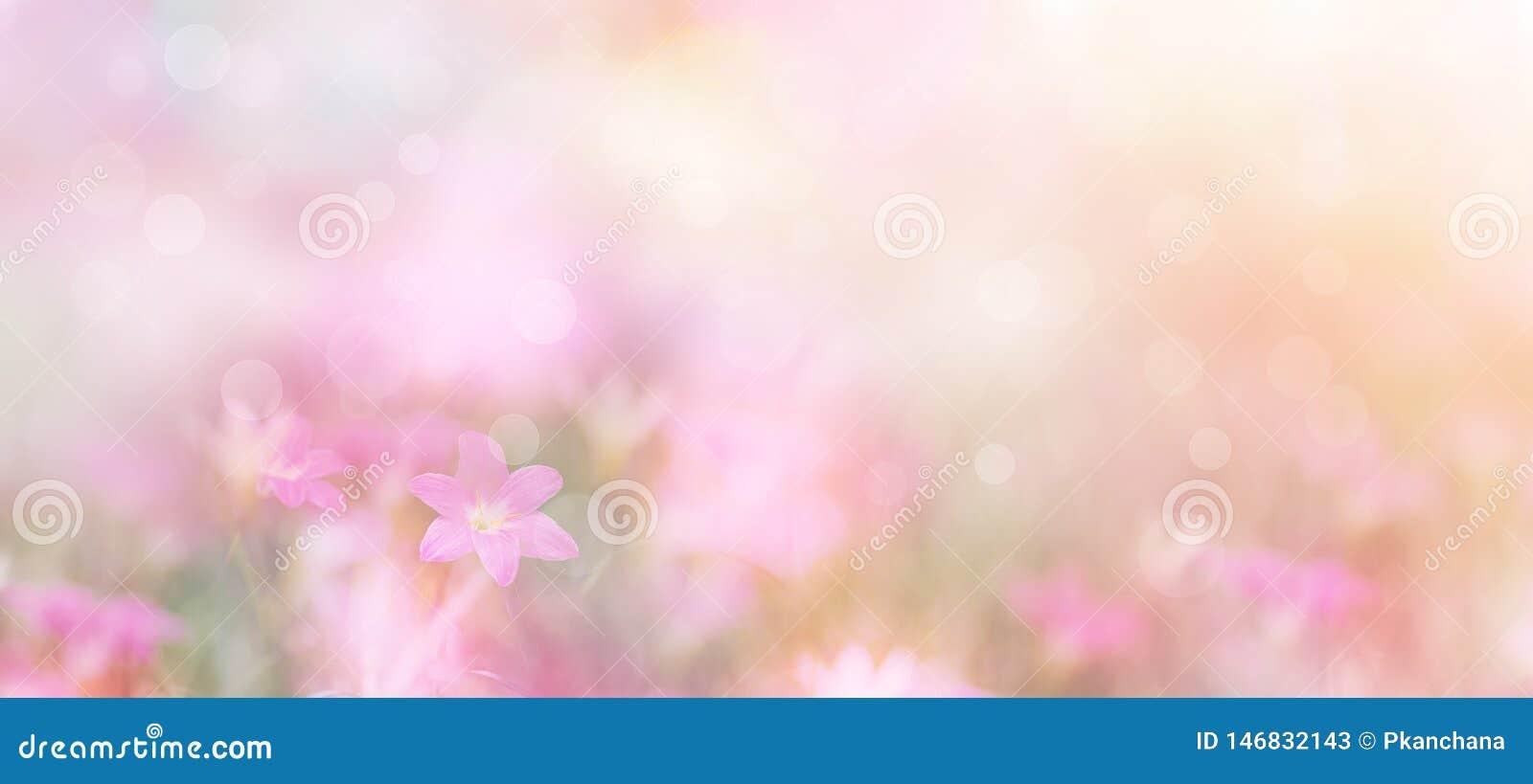 Contexto floral abstrato de flores roxas com estilo macio