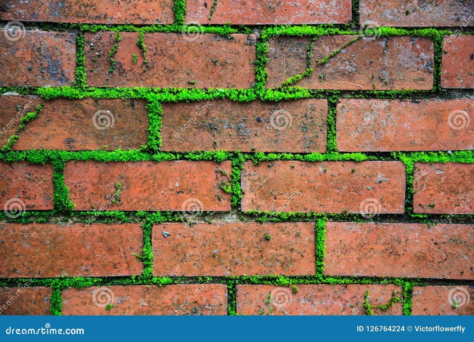 Contexto marrom vermelho retro textured envelhecido velho detalhado close up do papel de parede da superfície da parede do bloco