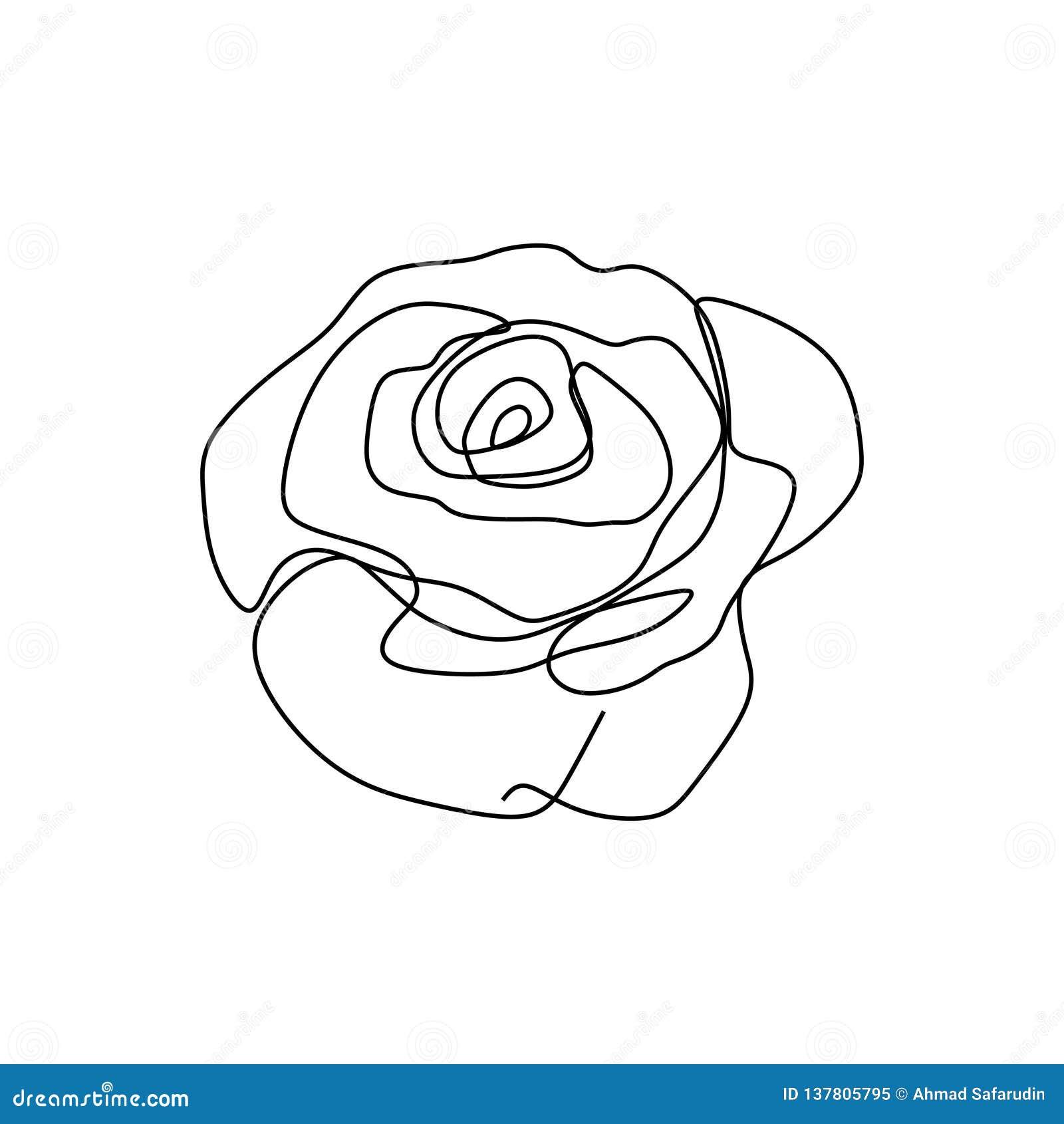 Continu Illustration Fleur De Rose De Vecteur De Dessin De Schema