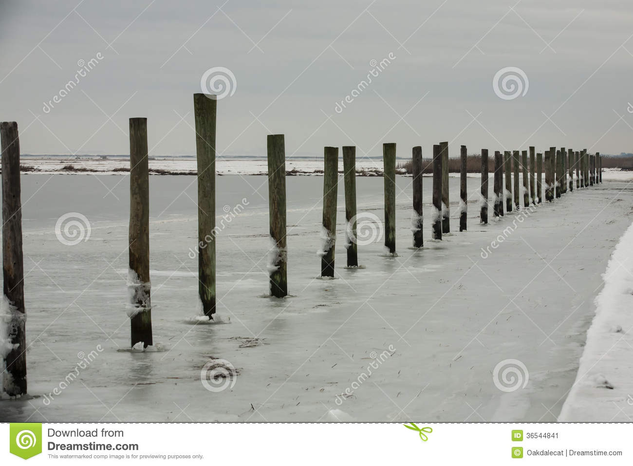 Continuous Line of Dock Piles in Frozen Water