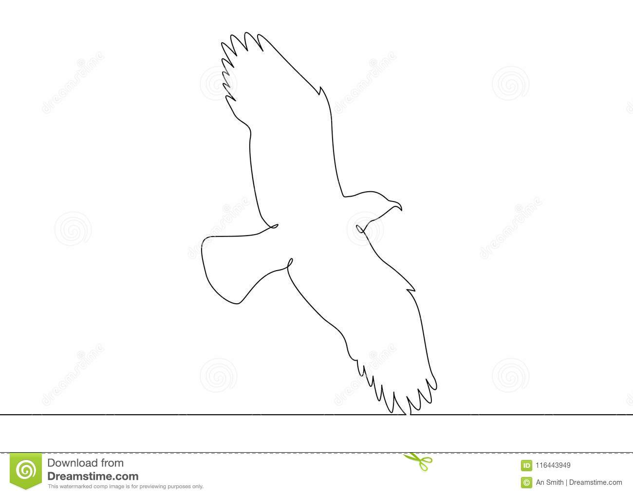 Continuous Line Drawing Bird Flying Stock Vector Illustration Of
