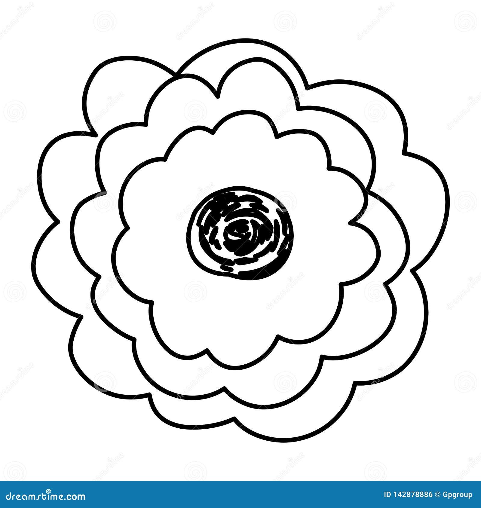 Contorno Do Esboco Da Flor Do Desenho Da Mao Com Diversas Petalas