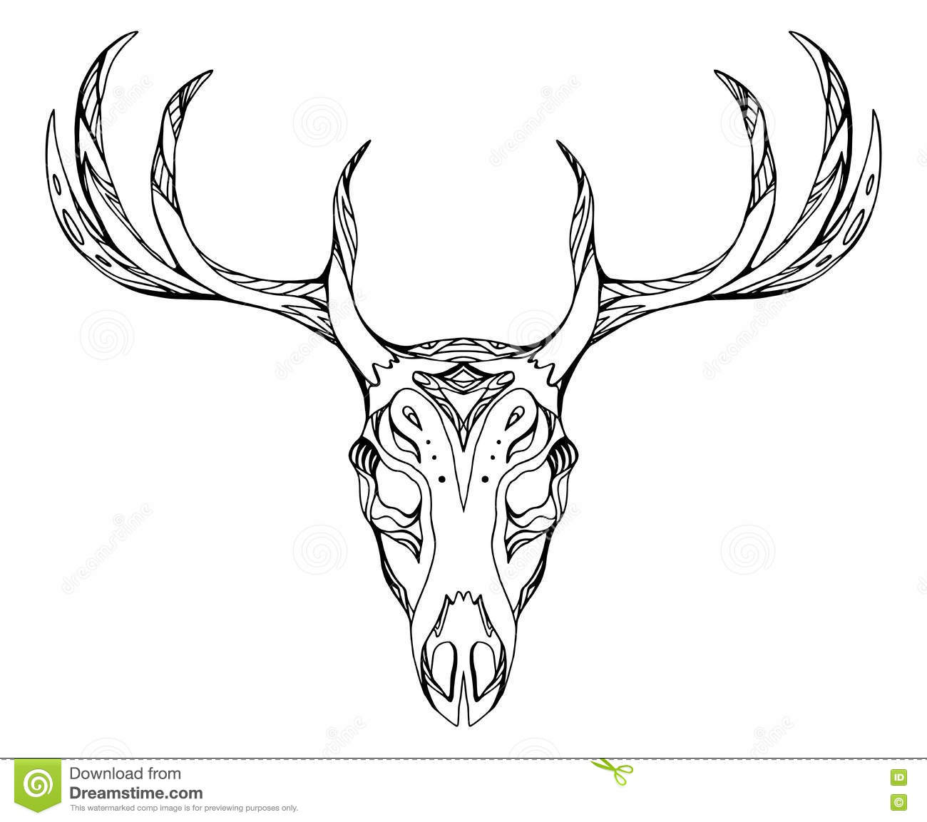 Deer Contour Line Drawing : Deer skull sketch by