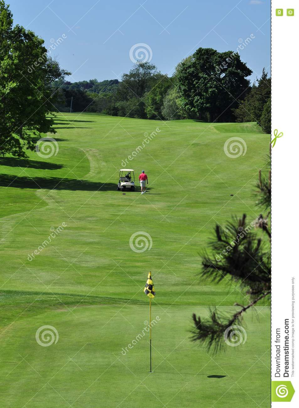 Contoured Fairway Royalty Free Stock Images Image 14350559