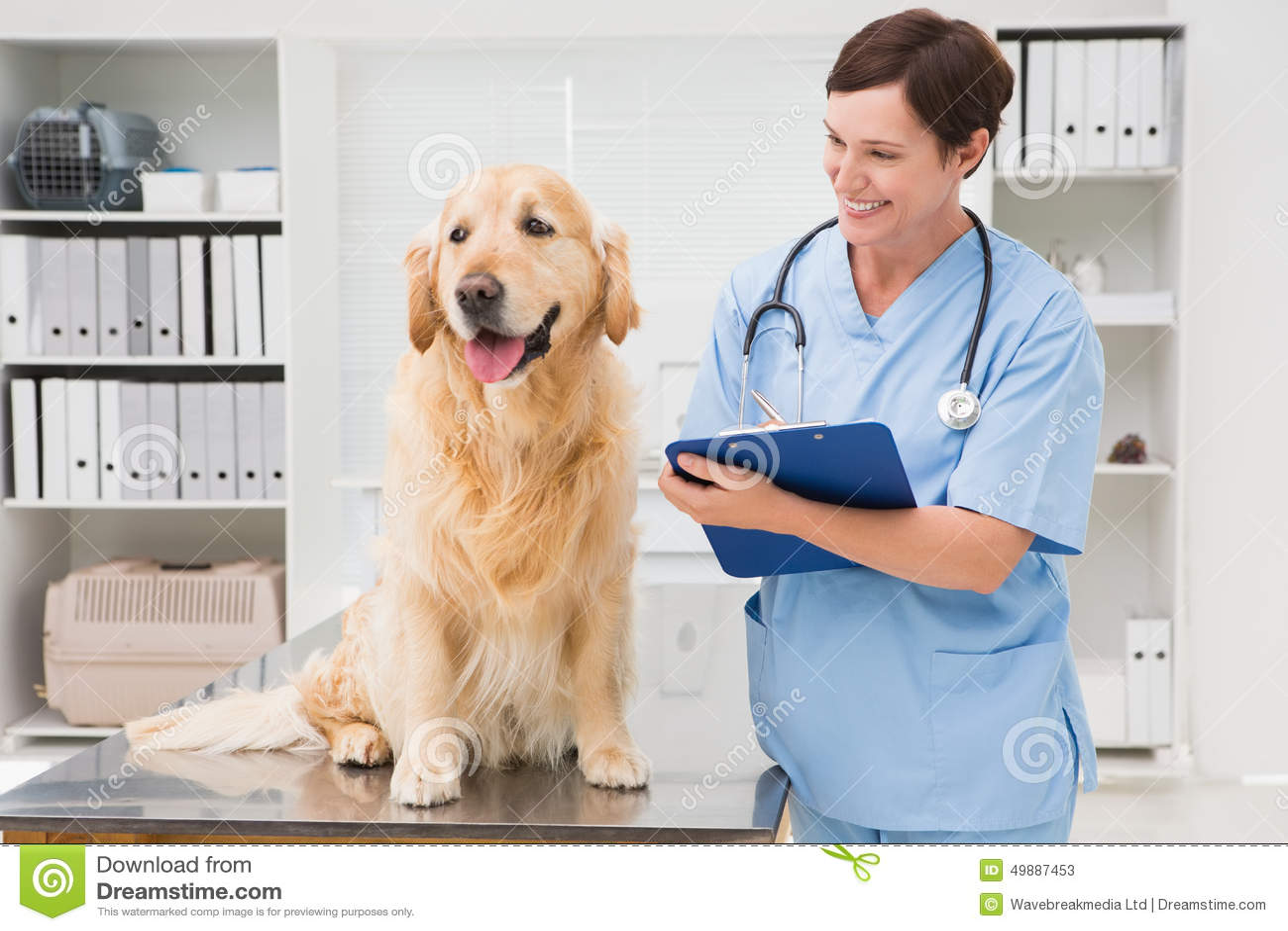 Contrôlez examiner un chien et l inscription sur le presse-papiers