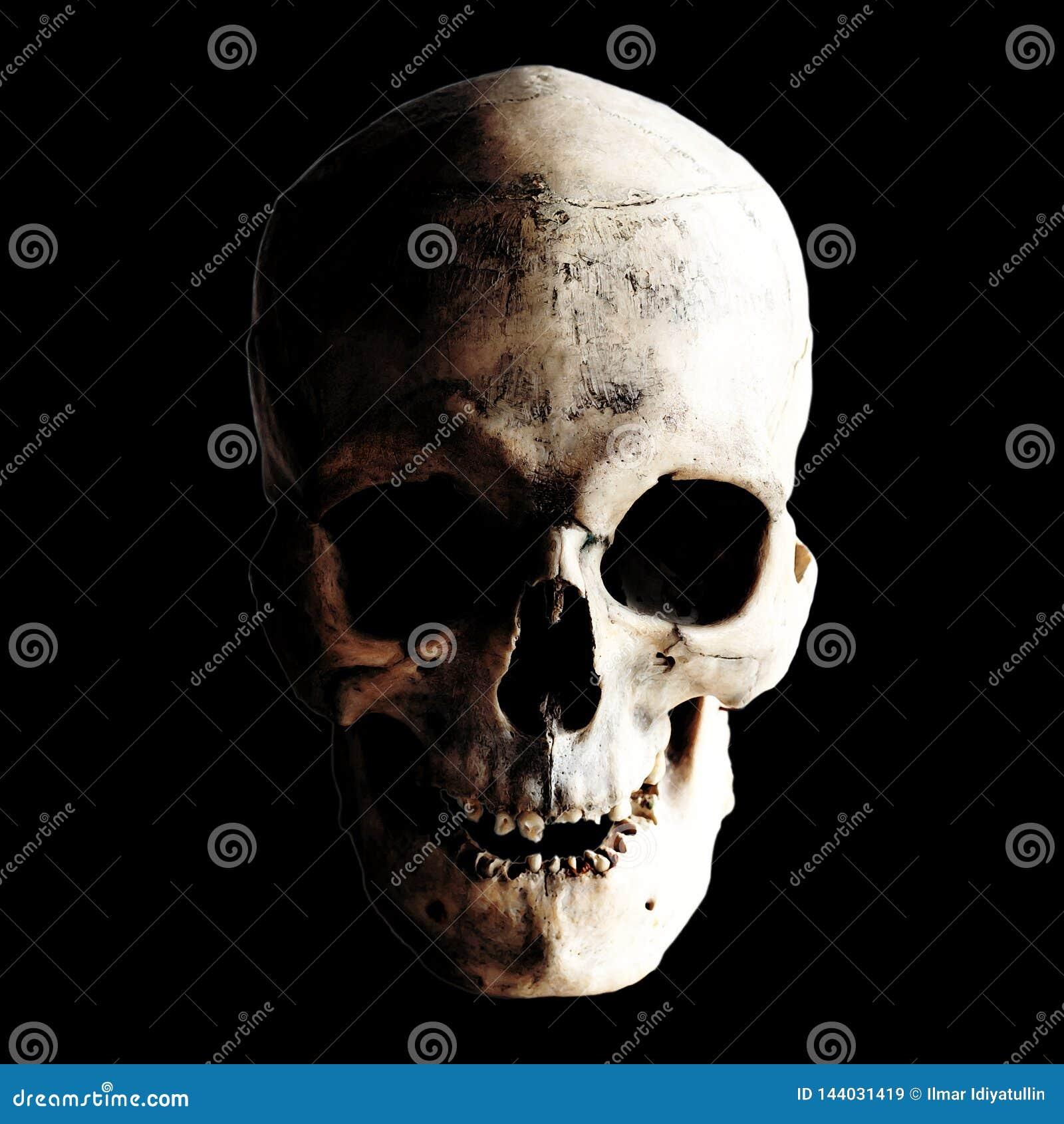 Contrastbeeld van een echte menselijke schedel op een donkere achtergrond Geïsoleerd op Zwarte