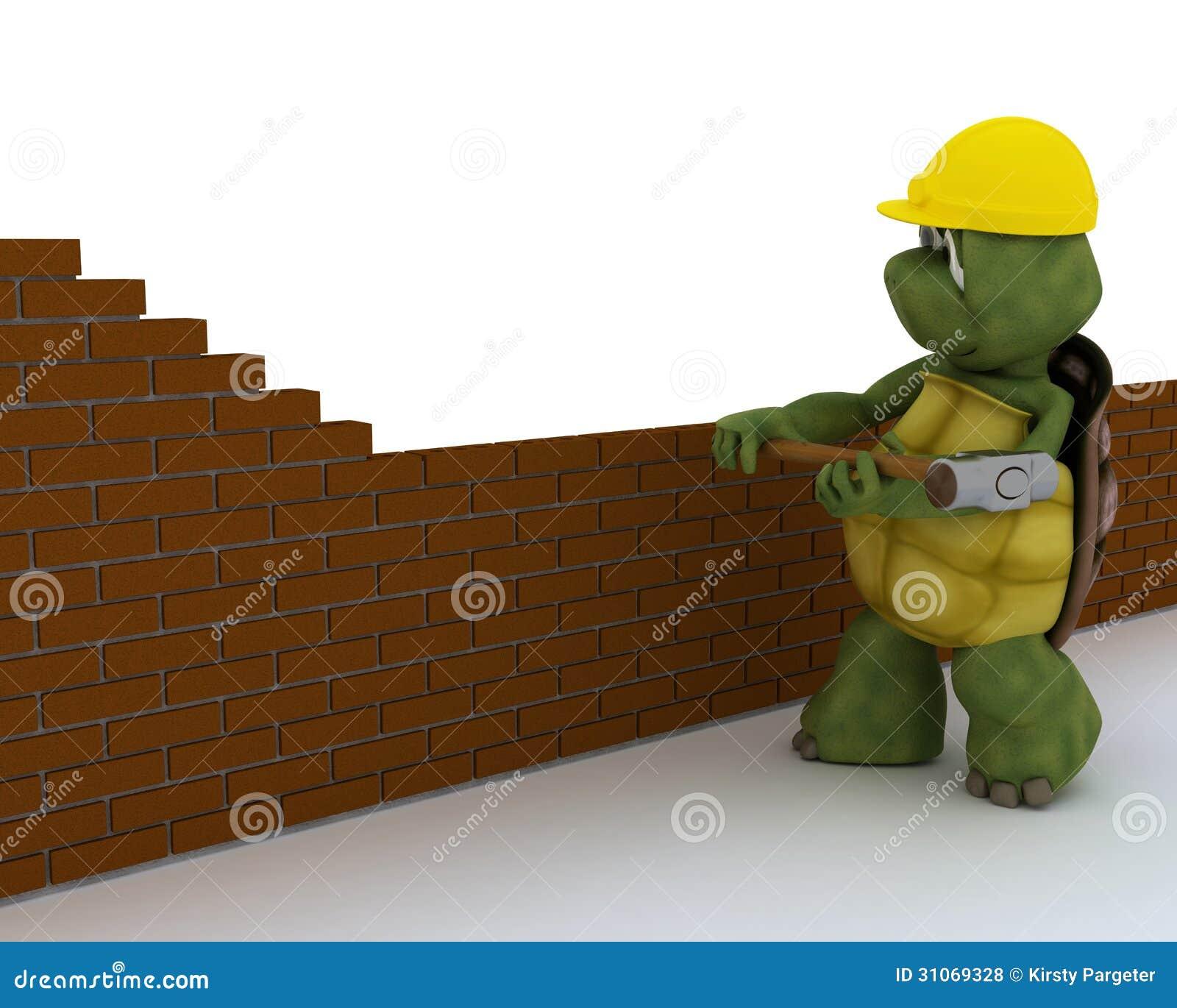 Contratista de obras de la tortuga